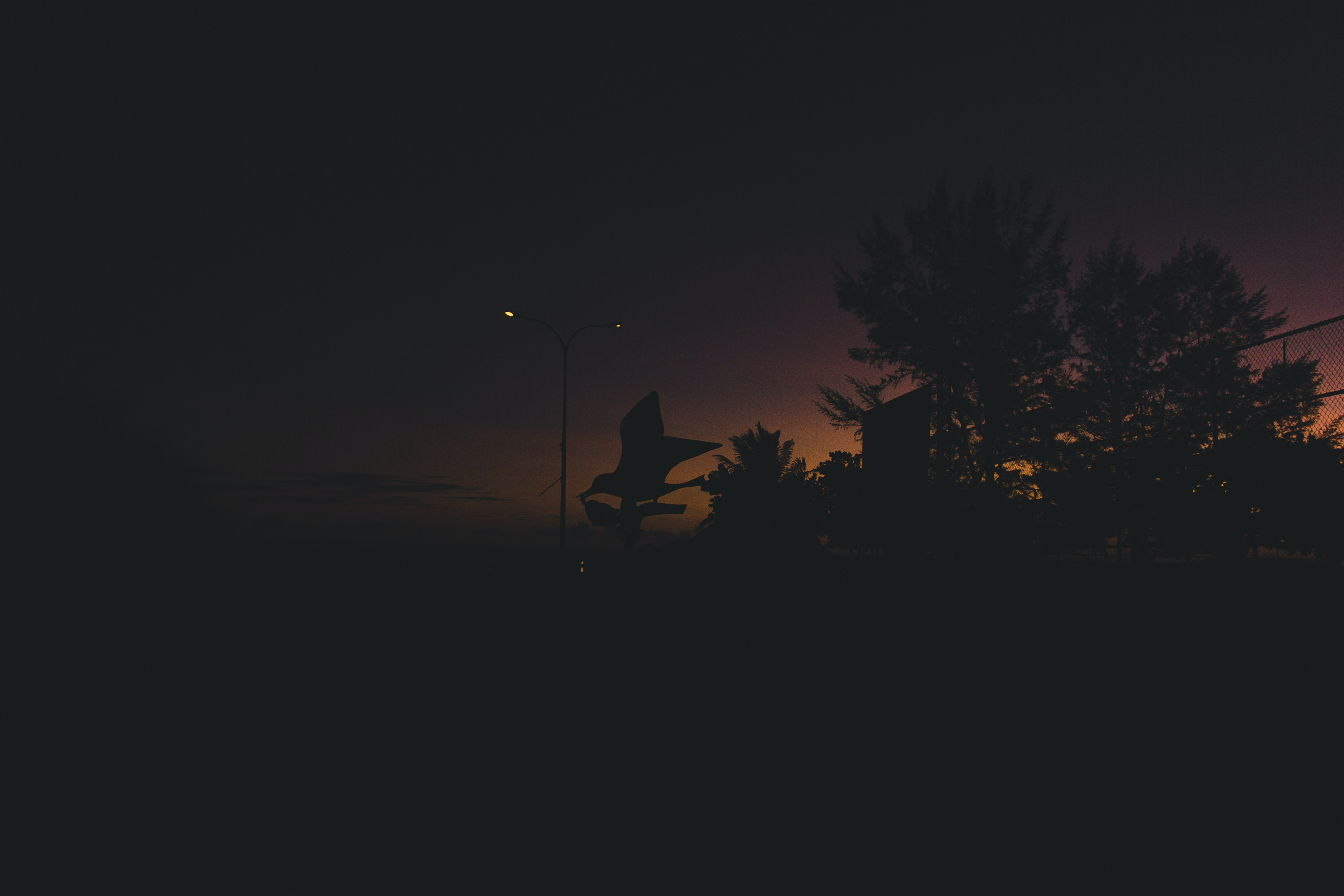 Darkness in a park outside.