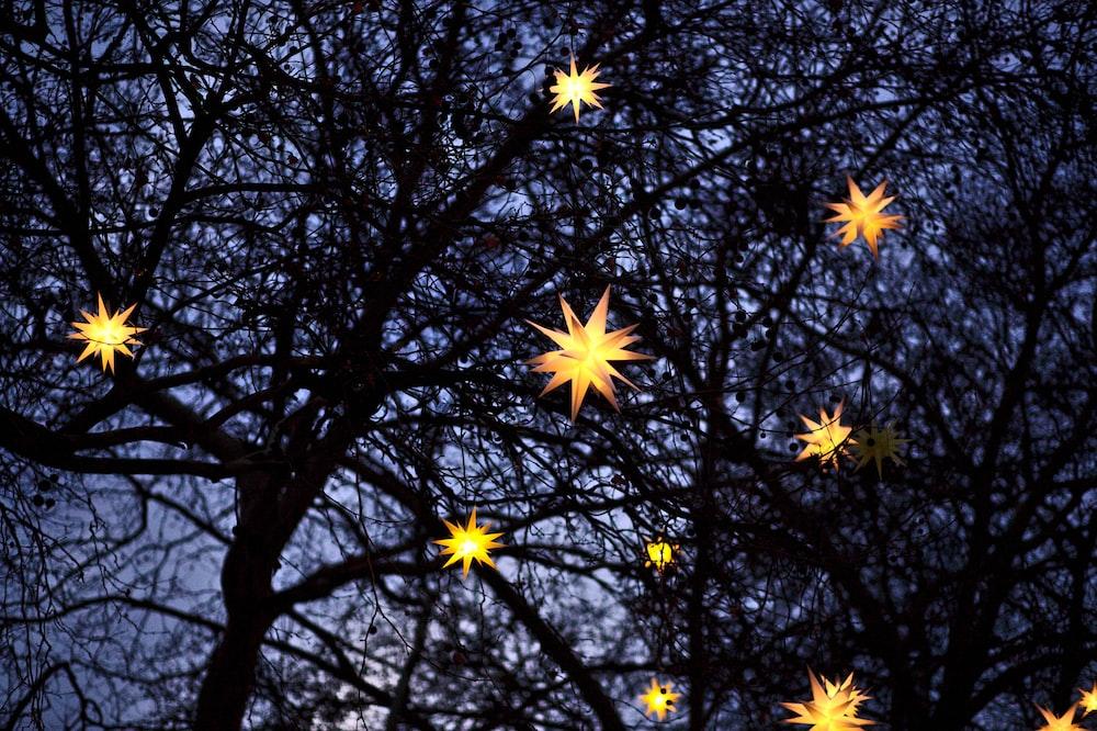 yellow pendant lights on tree