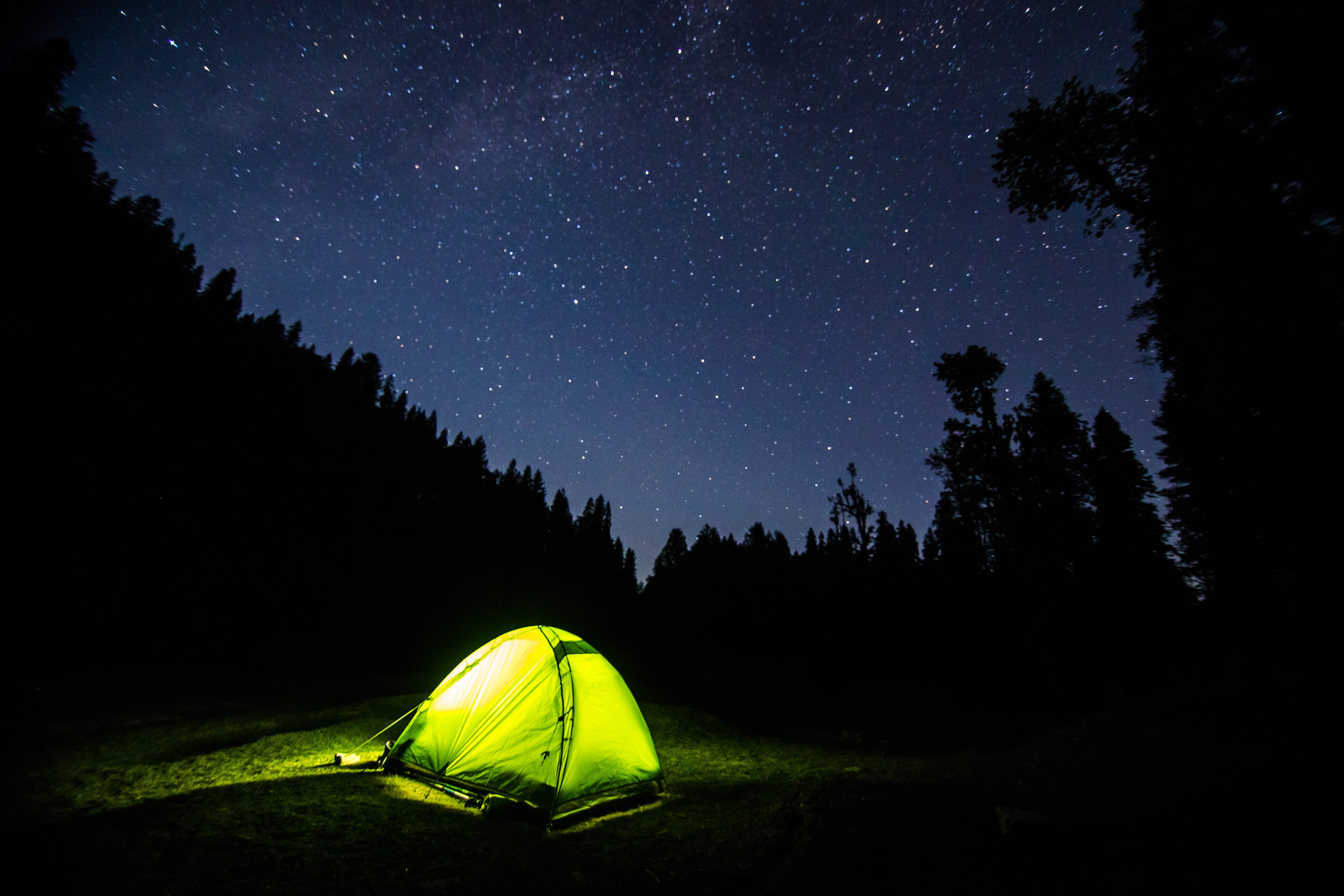 Light in a green tent surrounded by silhouettes of trees on a starry night