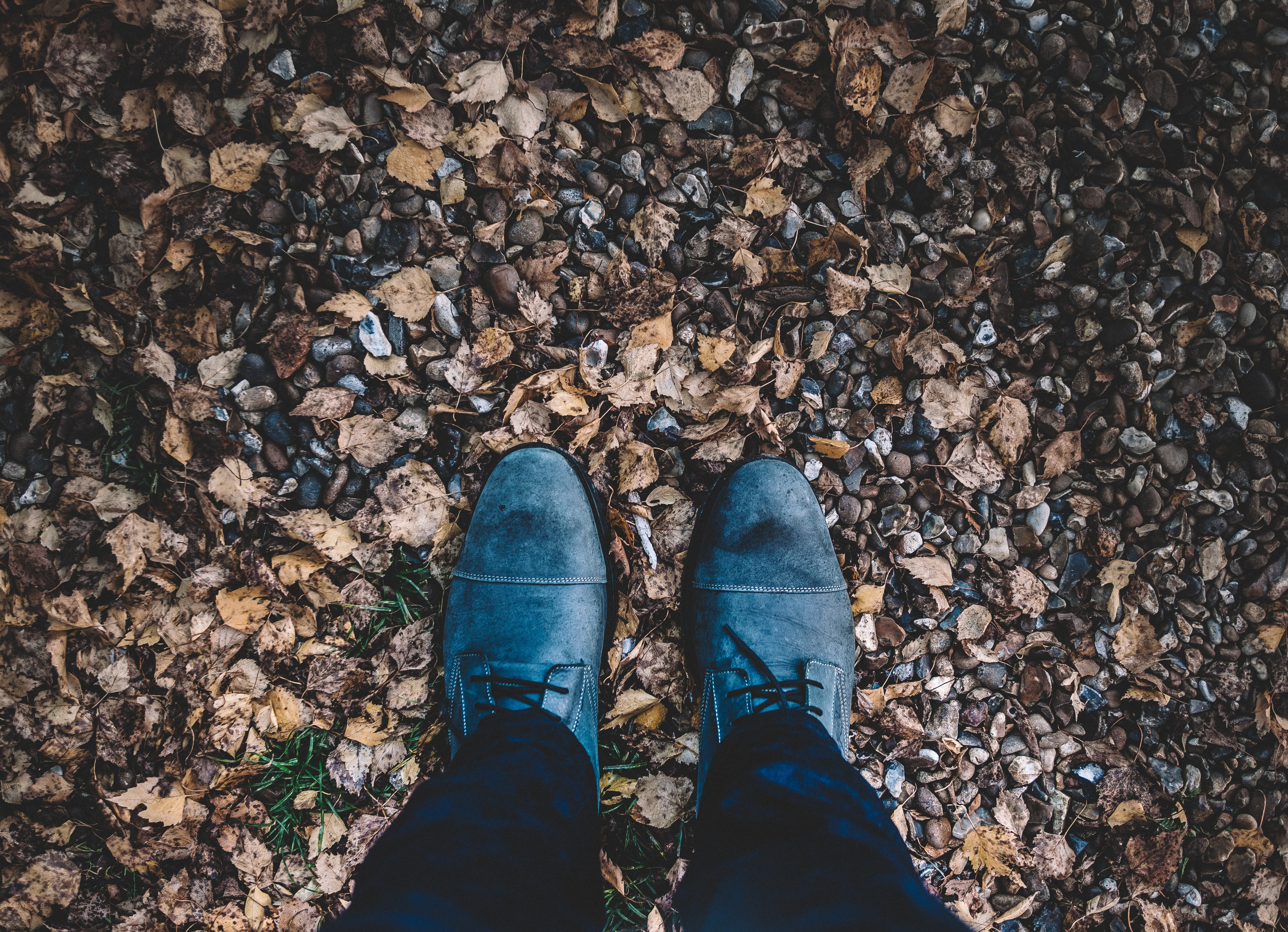 Looking down at a pair of blue boots in a pile of leaves on the floor in the autumn.