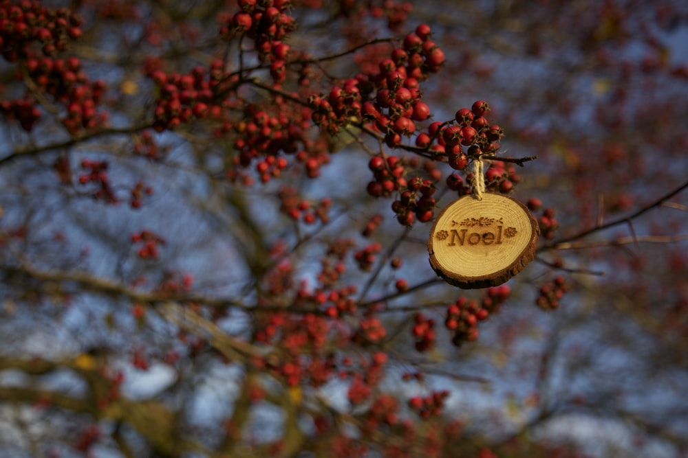round brown Noel hanging decor at red fruits