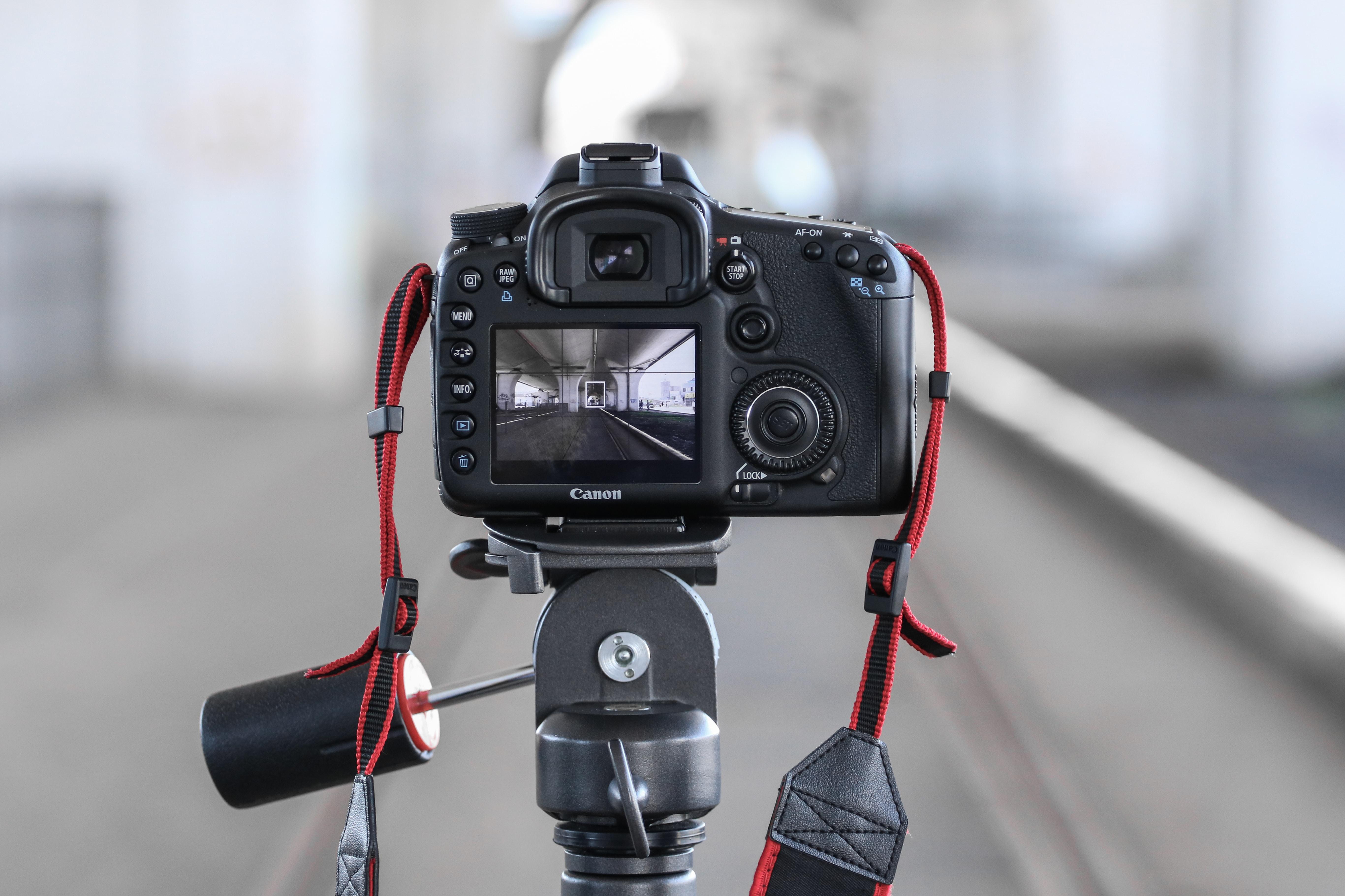 selective focus photo of black Canon DSLR camera on tripod