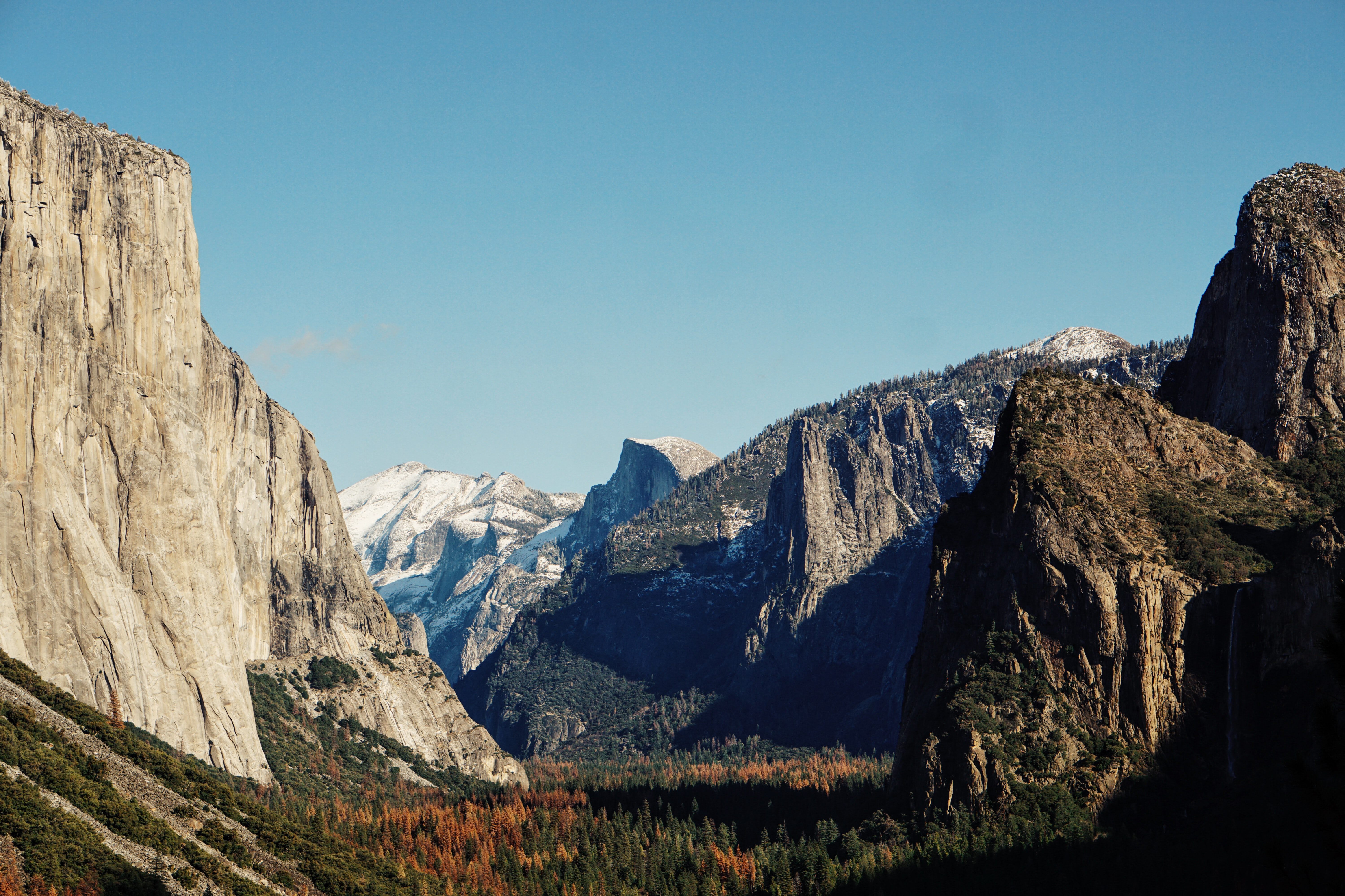 The wooded floor of Yosemite Valley in the autumn
