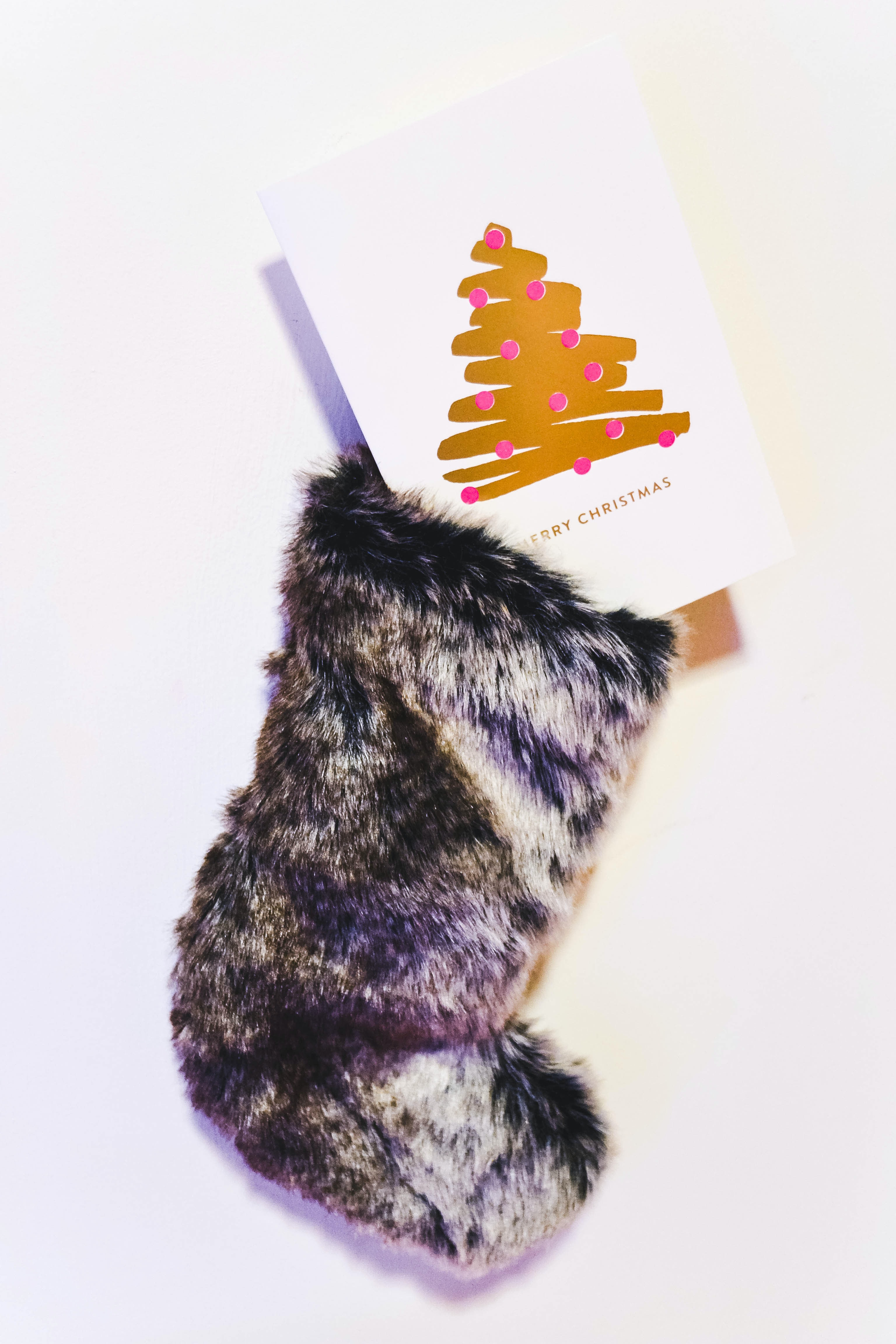 An XMAS sock with a Christmas card inside.