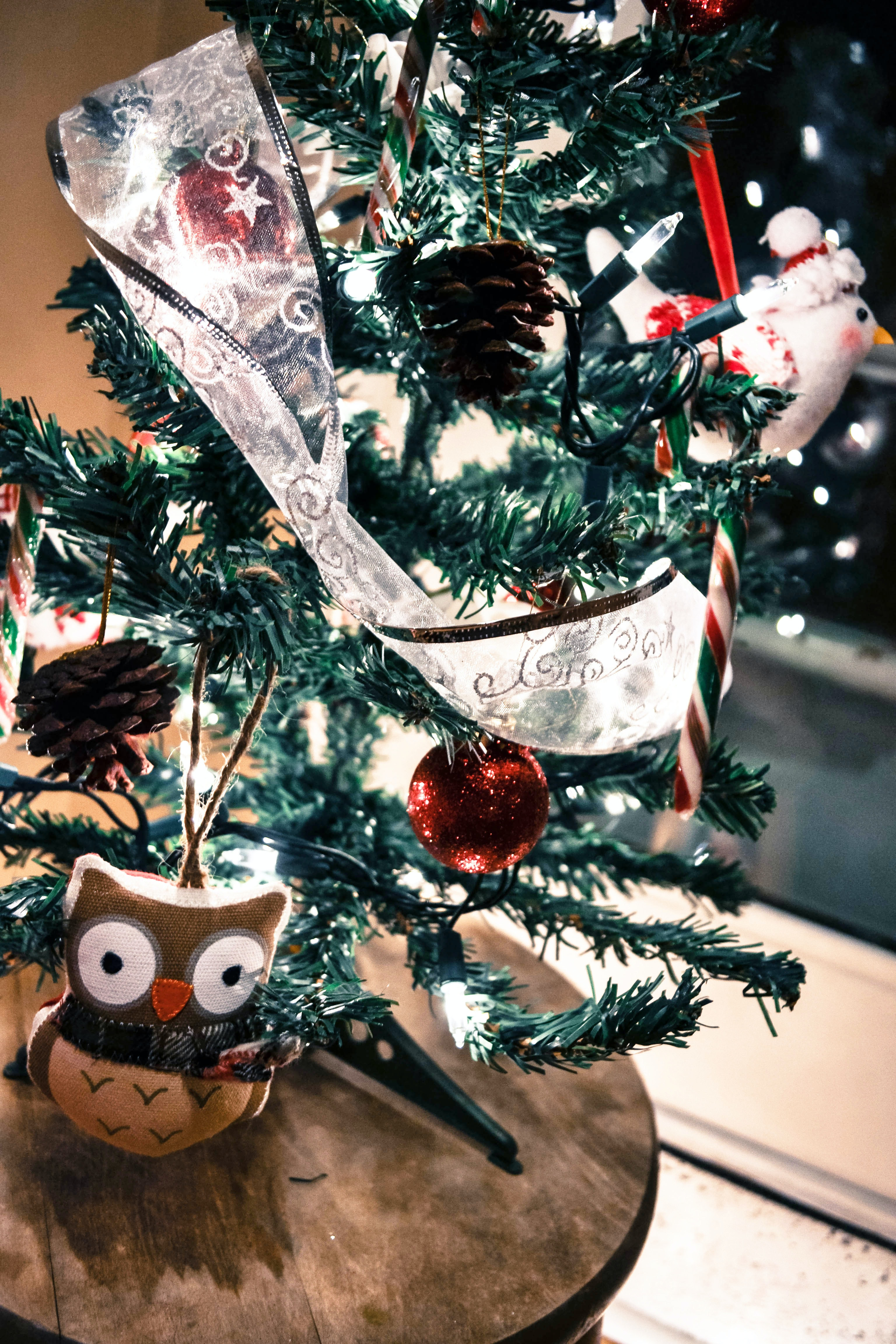 An owl sitting in front of a small Christmas tree.