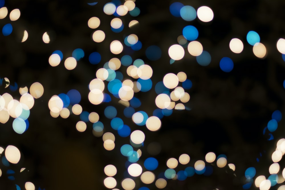 blue and brown bookeh lights