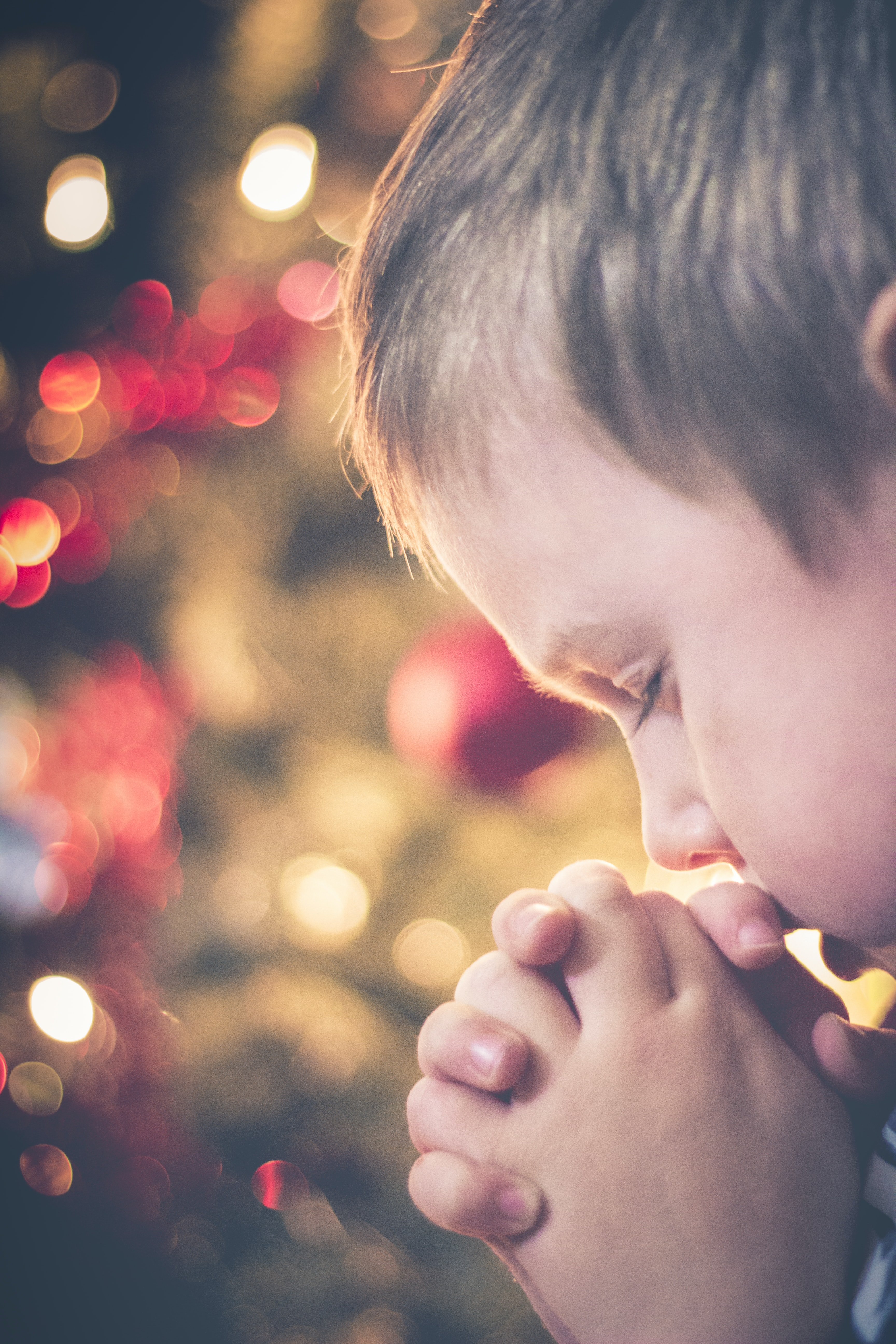 A little boy praying in front of a Christmas tree.