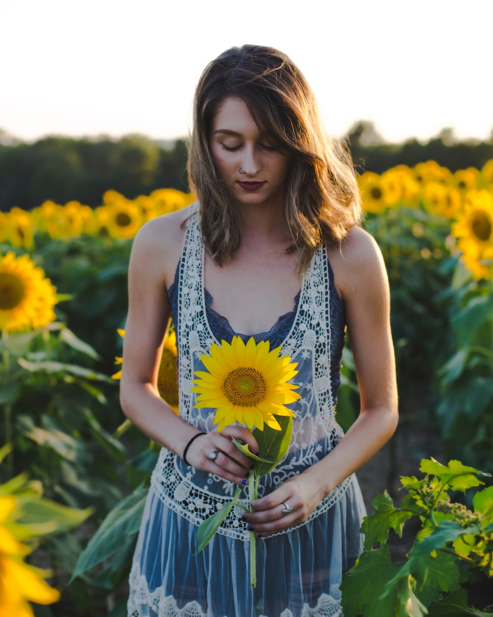 woman standing at sunflower field