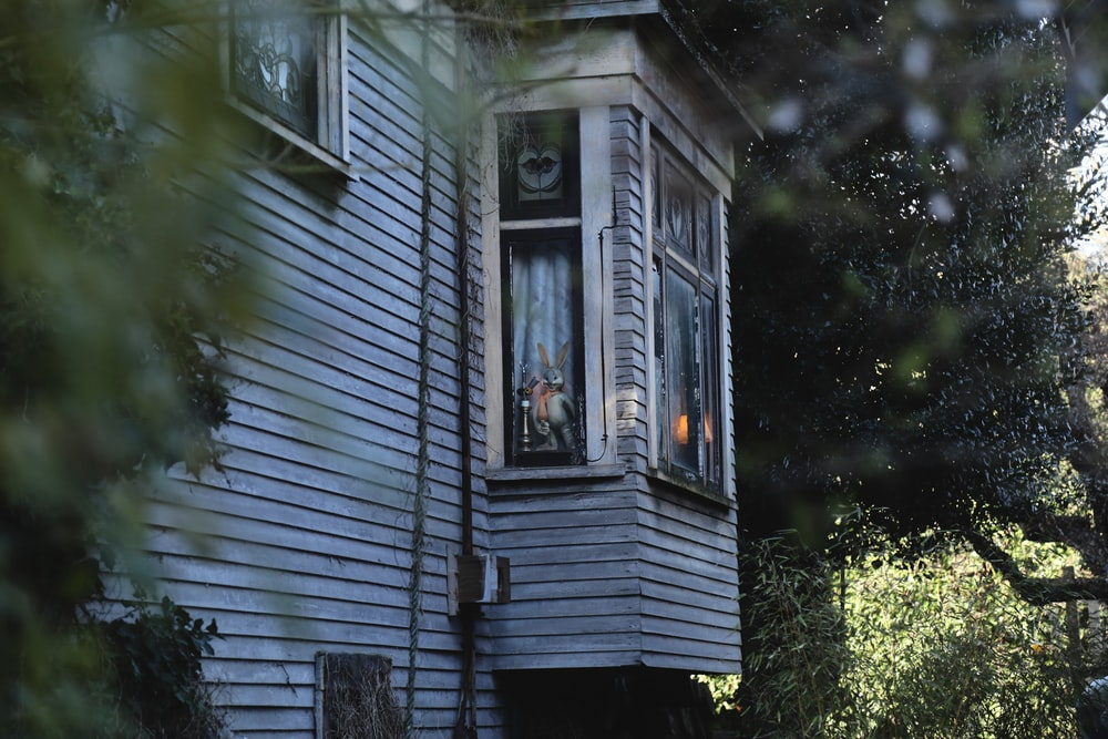 shallow focus photography of wooden house beside trees