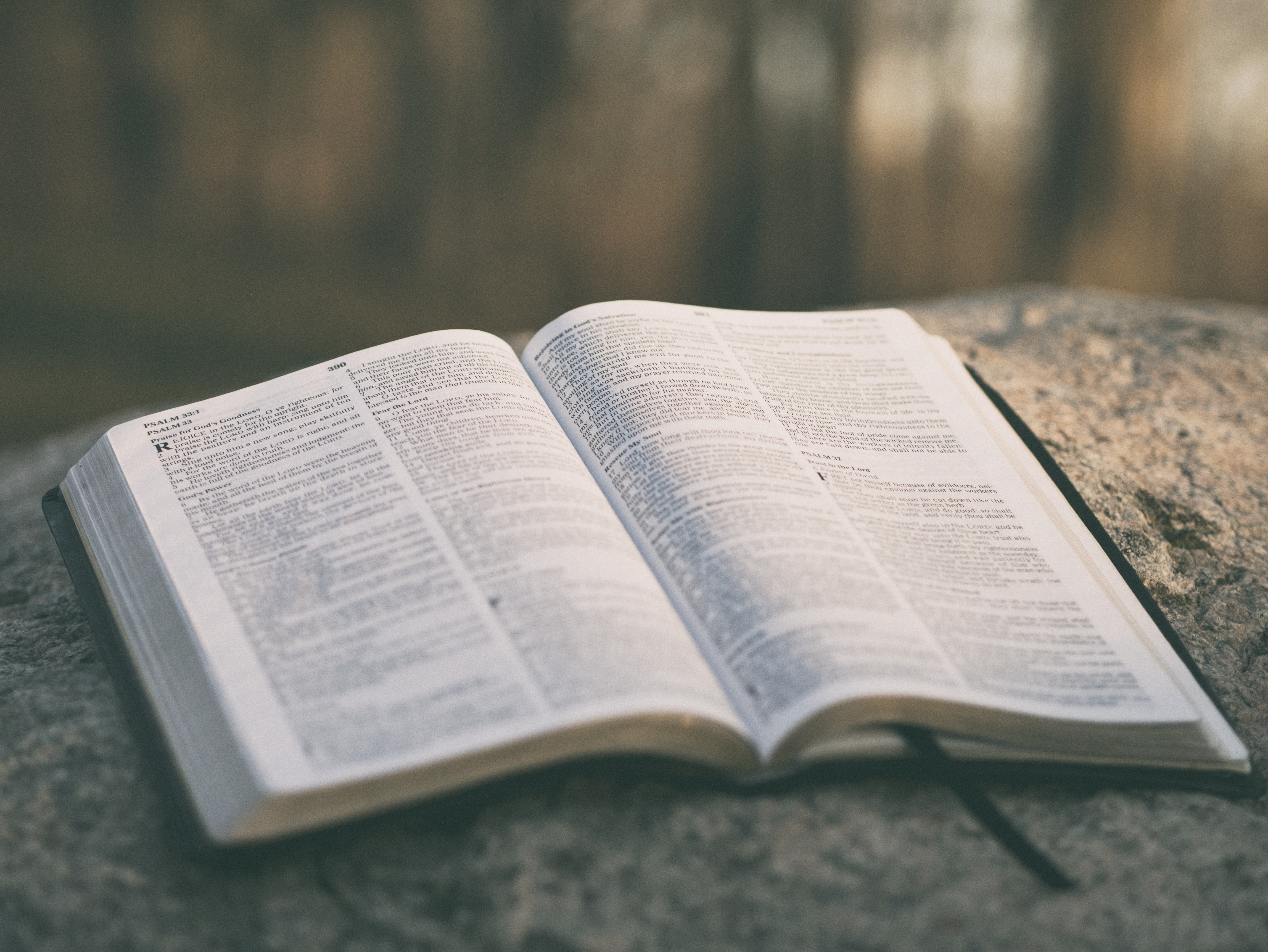 Discipleship - Growing God's Kingdom.