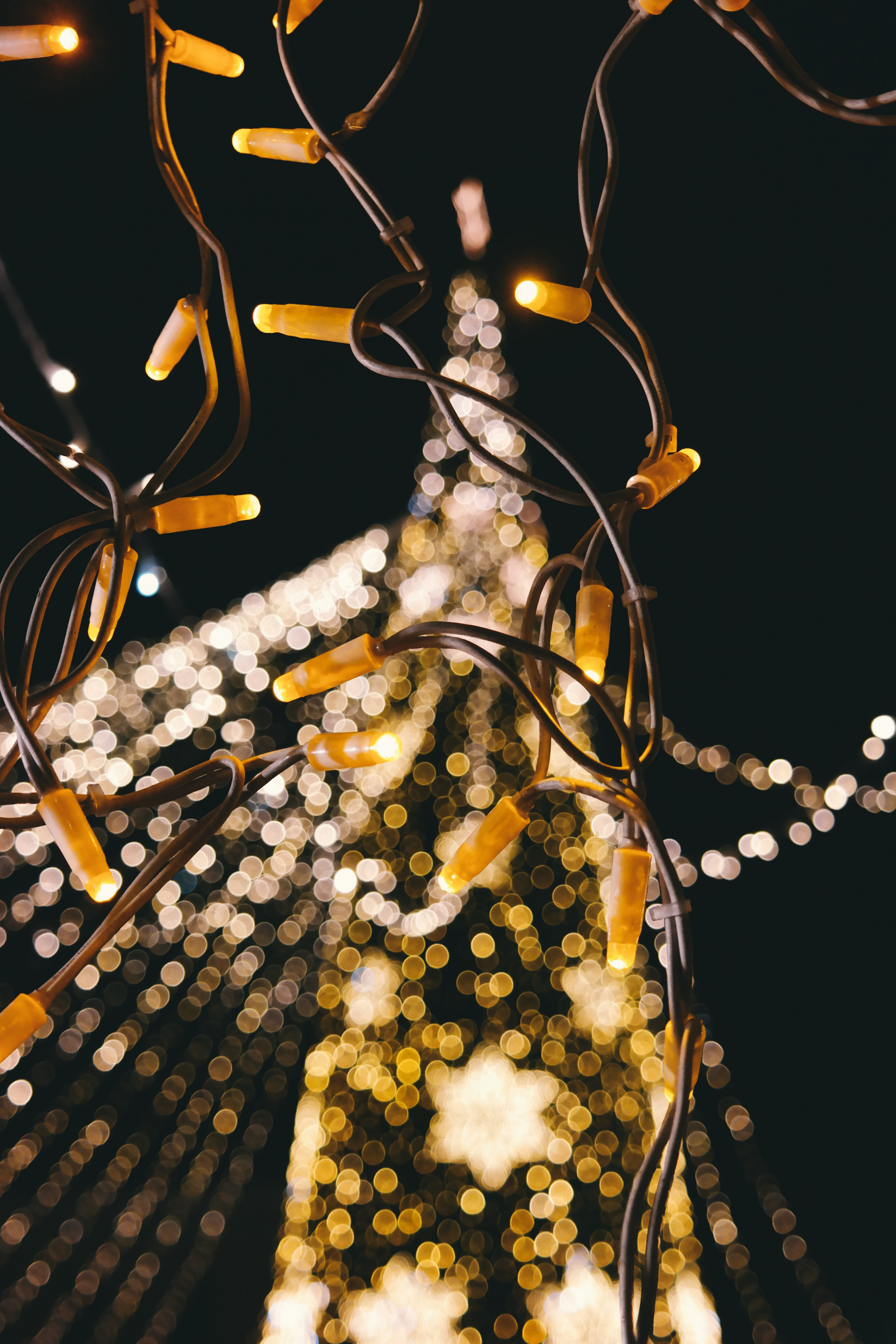 A blurred shot of a Christmas tree full of lights.