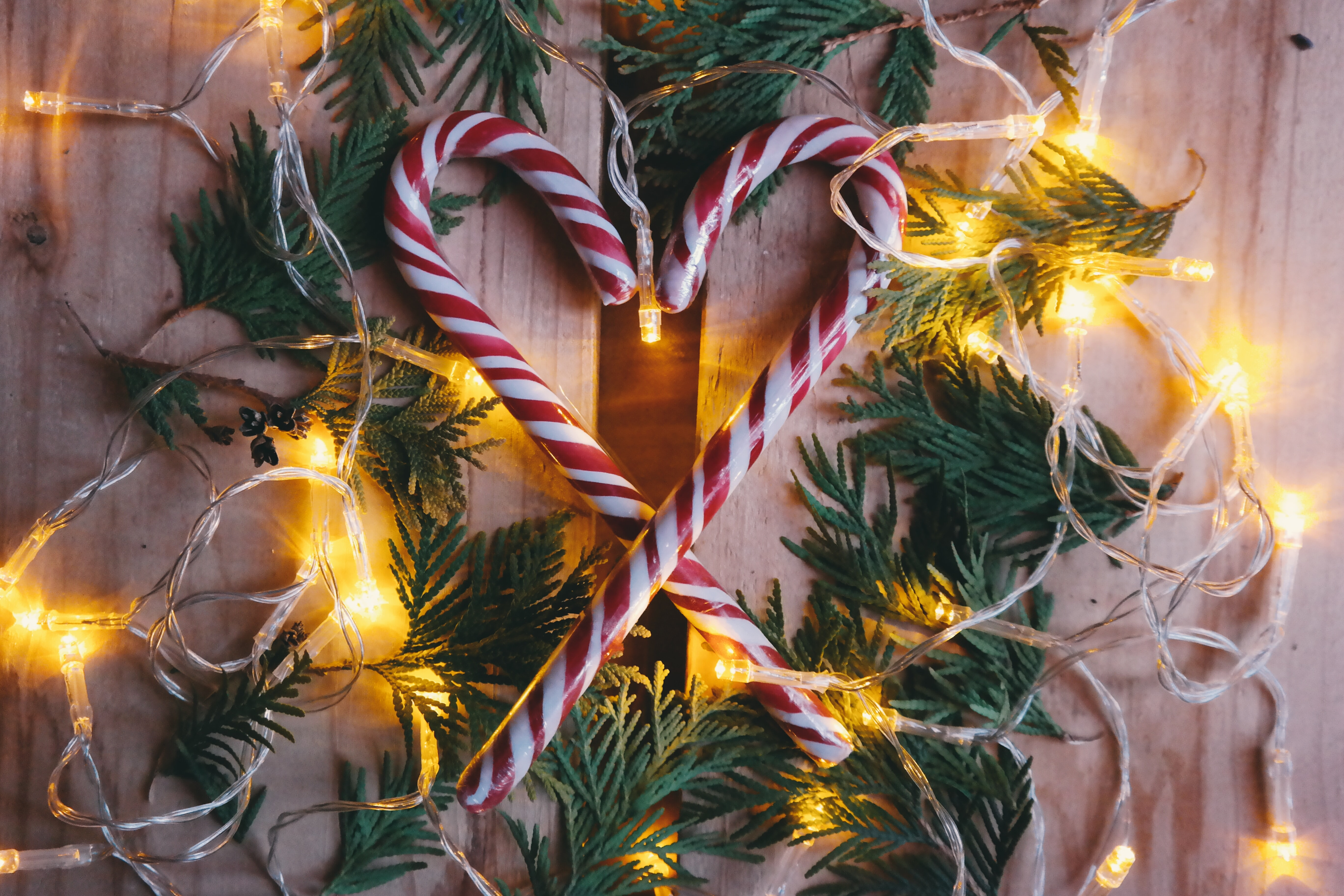Candy canes sitting inside of a wreath, surrounded by Christmas lights.