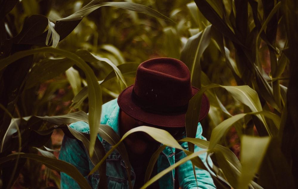 man wearing fedora hat in corn field