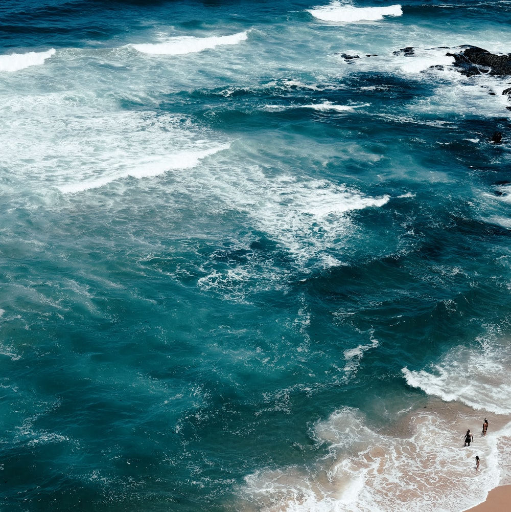 aerial photo of four people on seashore