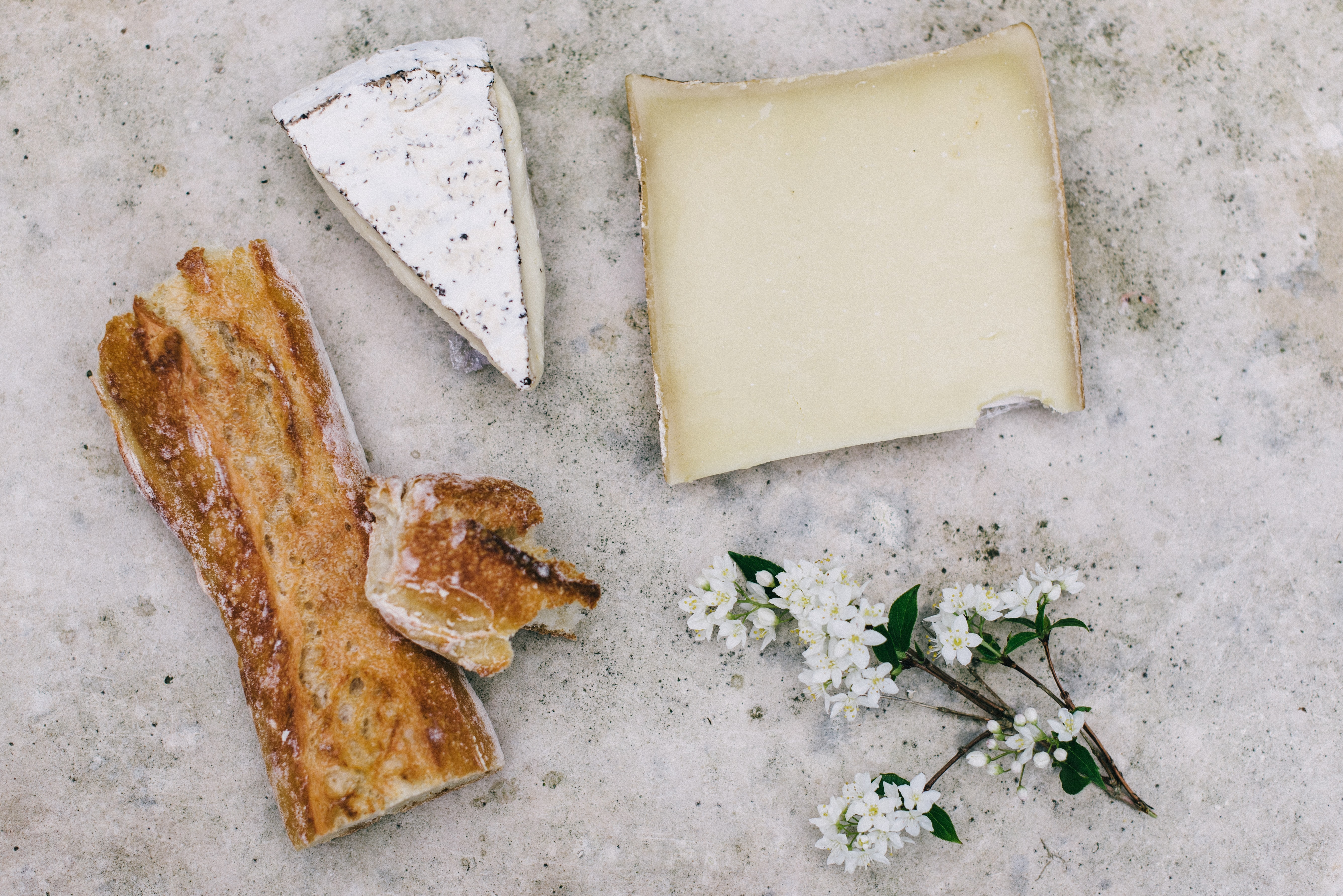 An overhead shot of a baguette, two pieces of cheese and branchlet with small white flowers