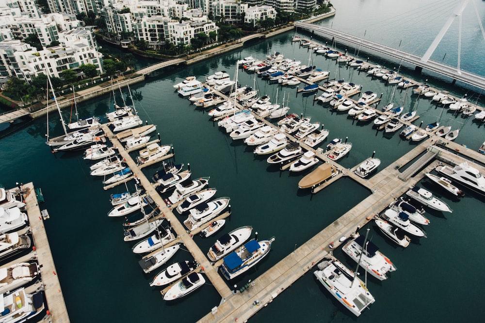 yachts on dock