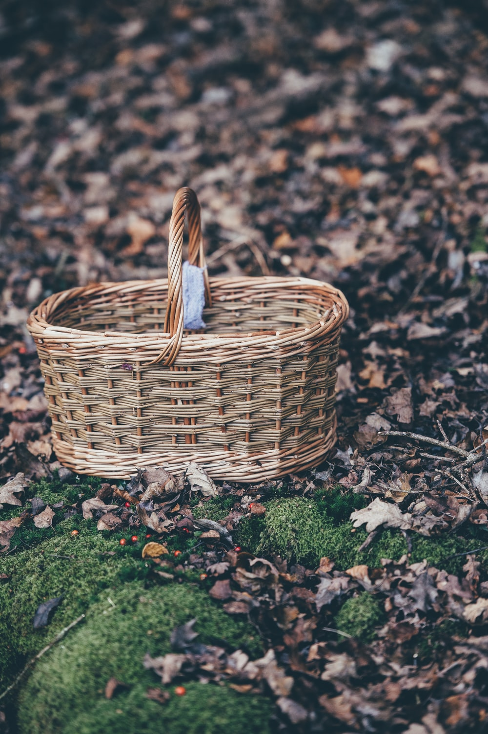 closeup photography of brown wicker basket