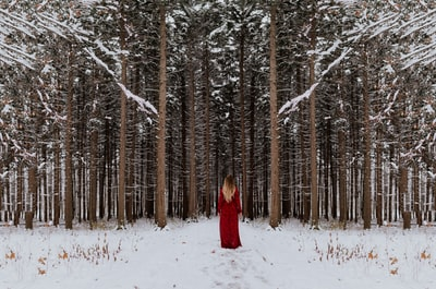 I chased Little Red into the woods during the first snow fall in Chicago!