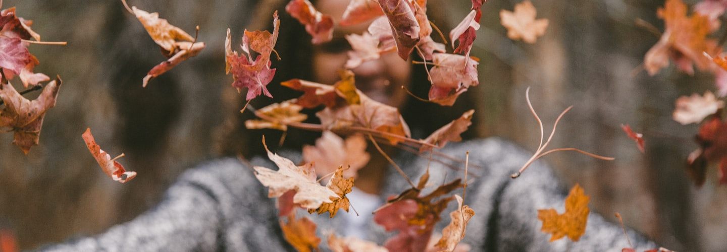 Making Leaf Mold With All Those Leaves and Other Fall Gardening Tips