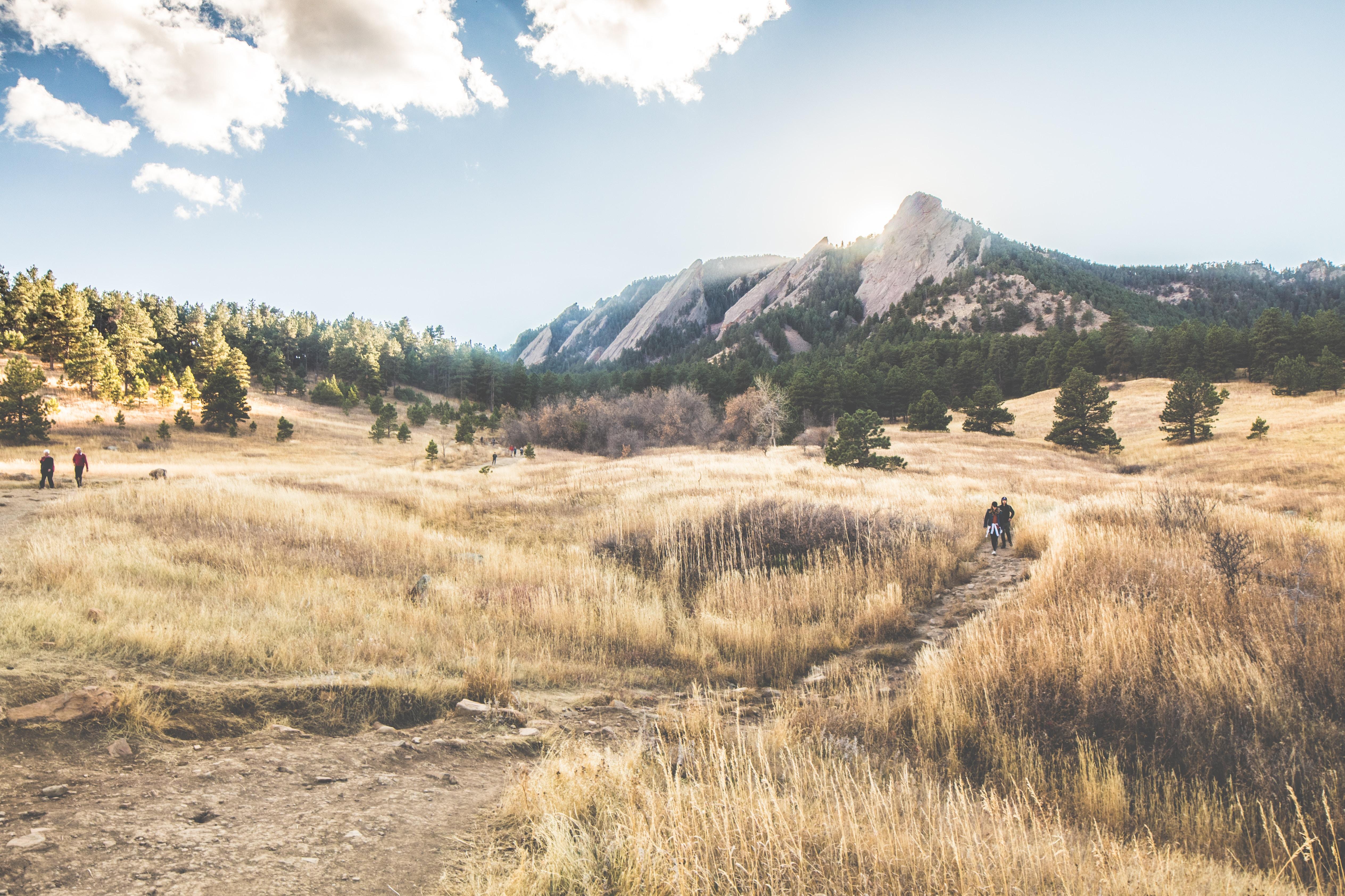 brown grass field near gray mountain under white sky