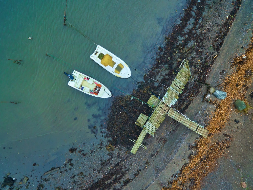 aerial view of two white boats on body of water