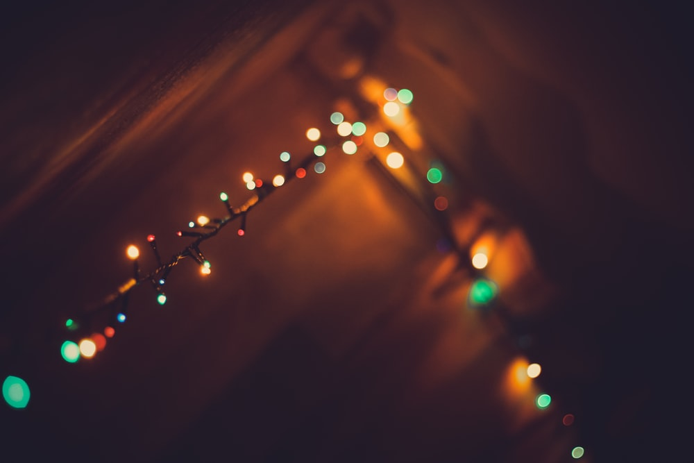 green and yellow string lights
