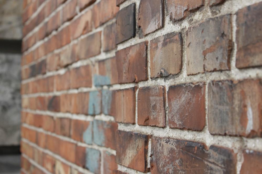 closeup photo of brown bricks