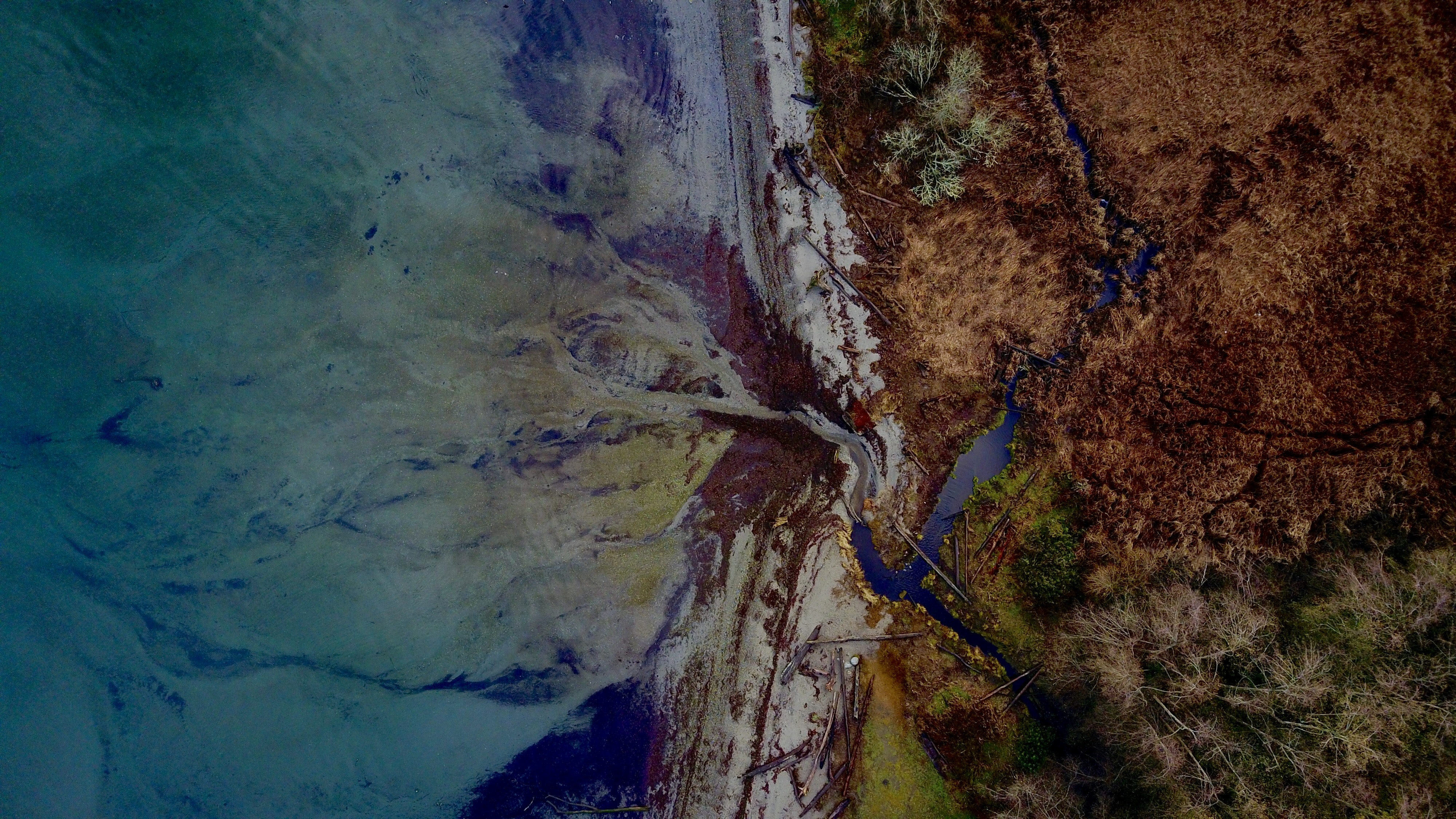 Drone aerial view of river flowing into the ocean in Federal Way, Washington, United States