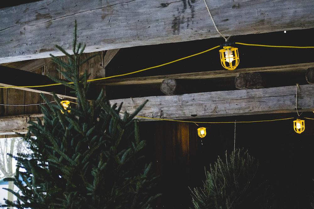 yellow string lights