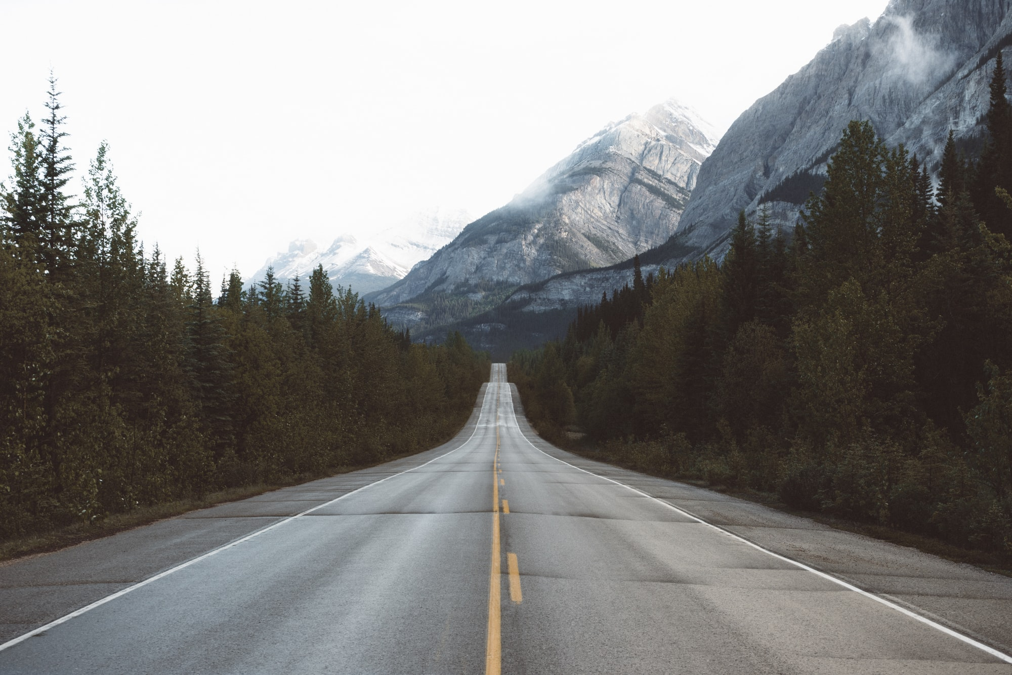 The insanely slow road to building a blog (and why most people give up)