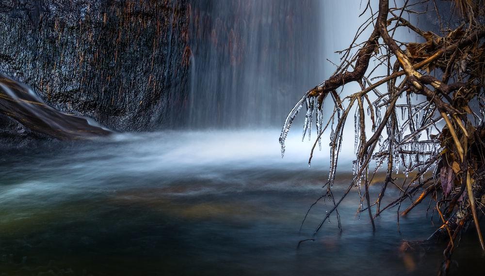 photo of waterfalls near roots