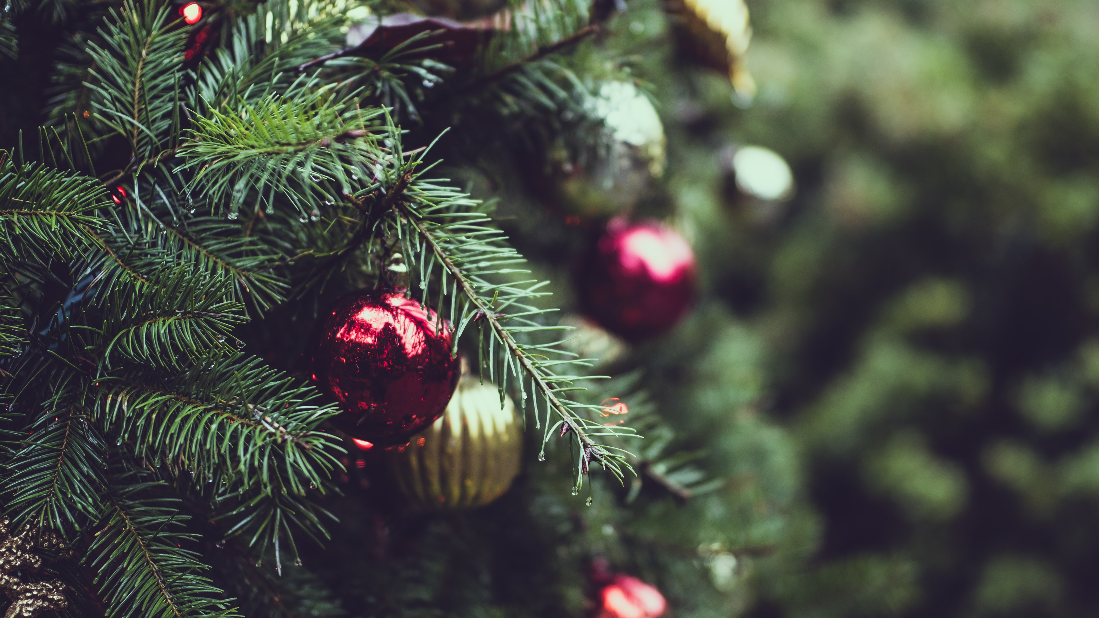 selective focus photograph of red and gold Christmas bauble balls