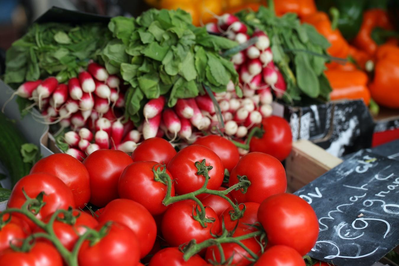 organic vegetable plants
