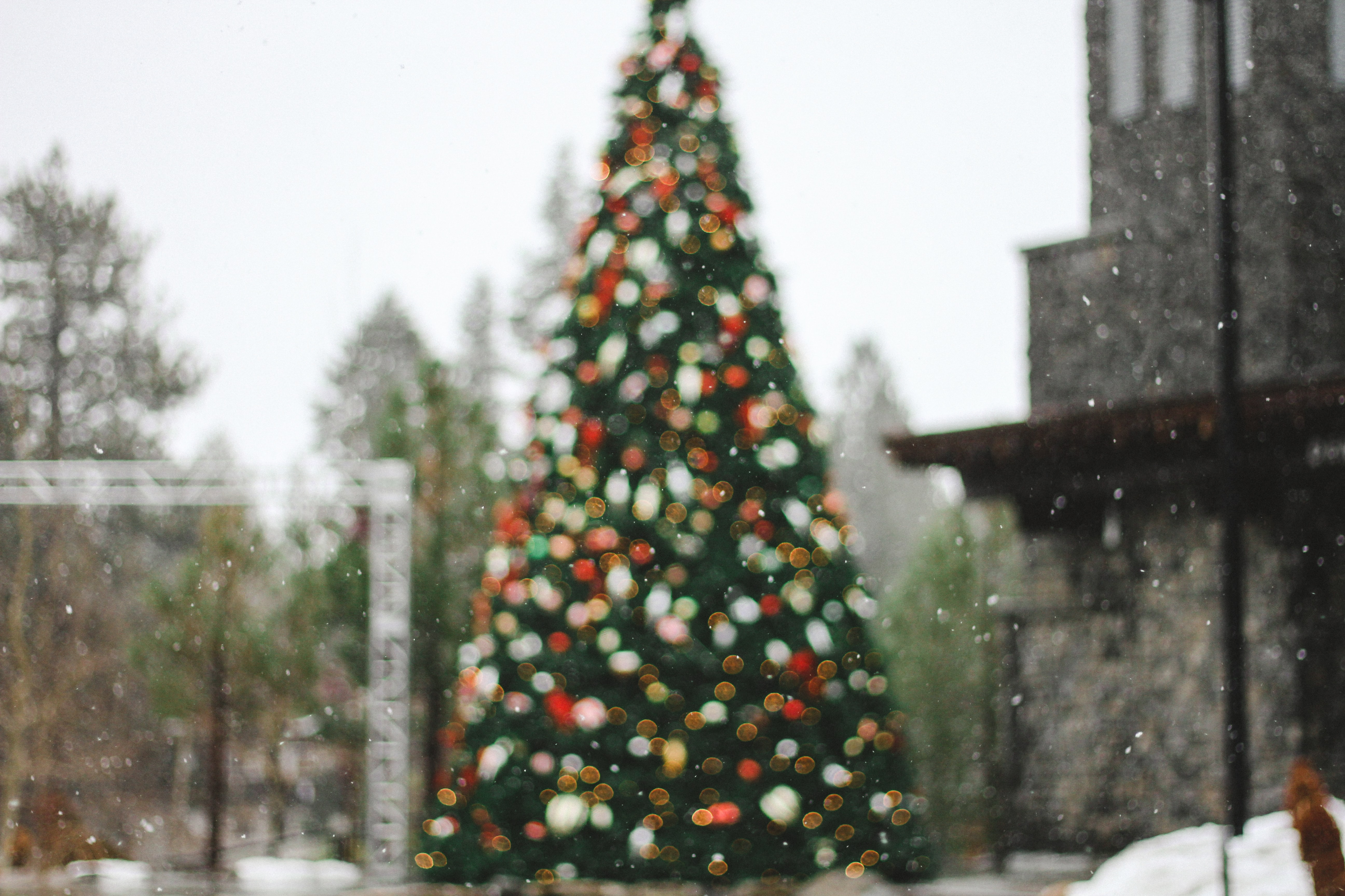 Snow falls in front of a festive, out of focus Christmas tree
