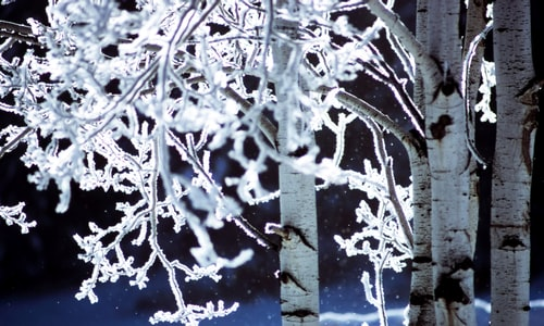 winter solstice facts