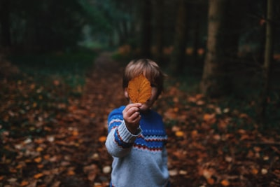 boy holding brown leaf covering his face childhood teams background