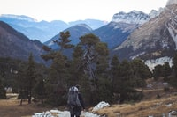 man carrying backpack standing near trees and mountain