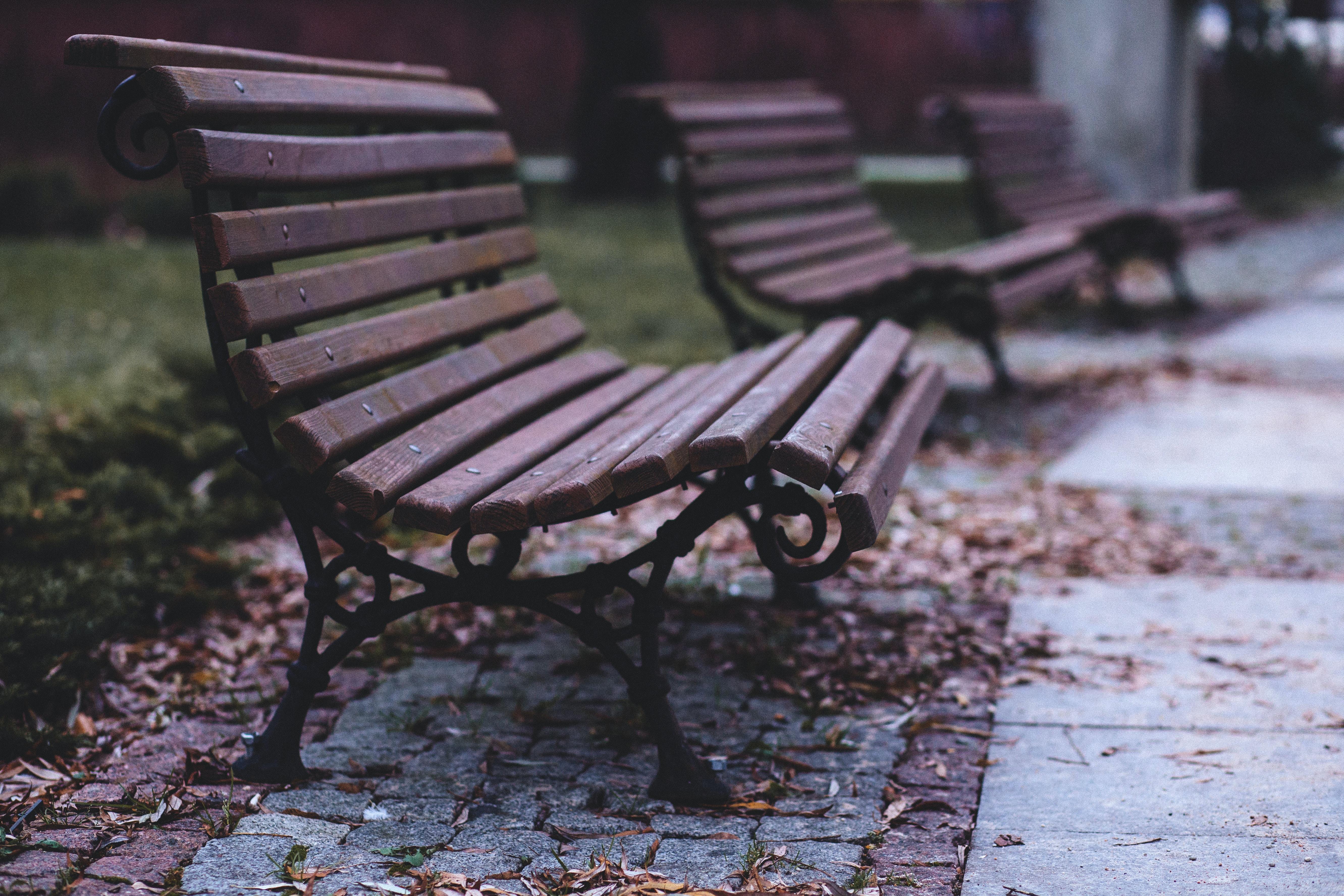 brown wooden bench near green grass
