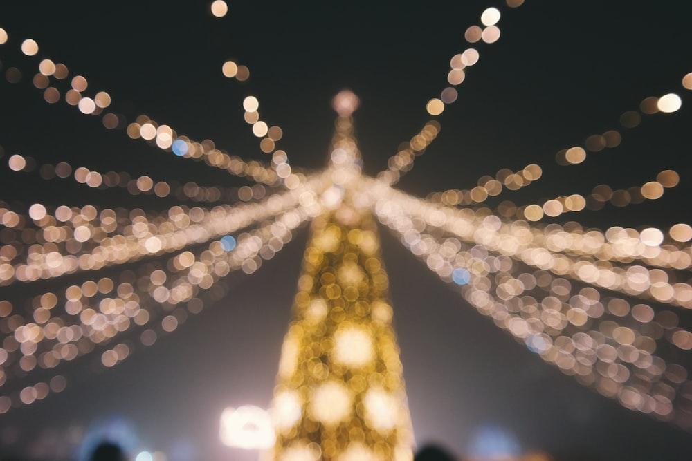 bokeh photography of Christmas tree