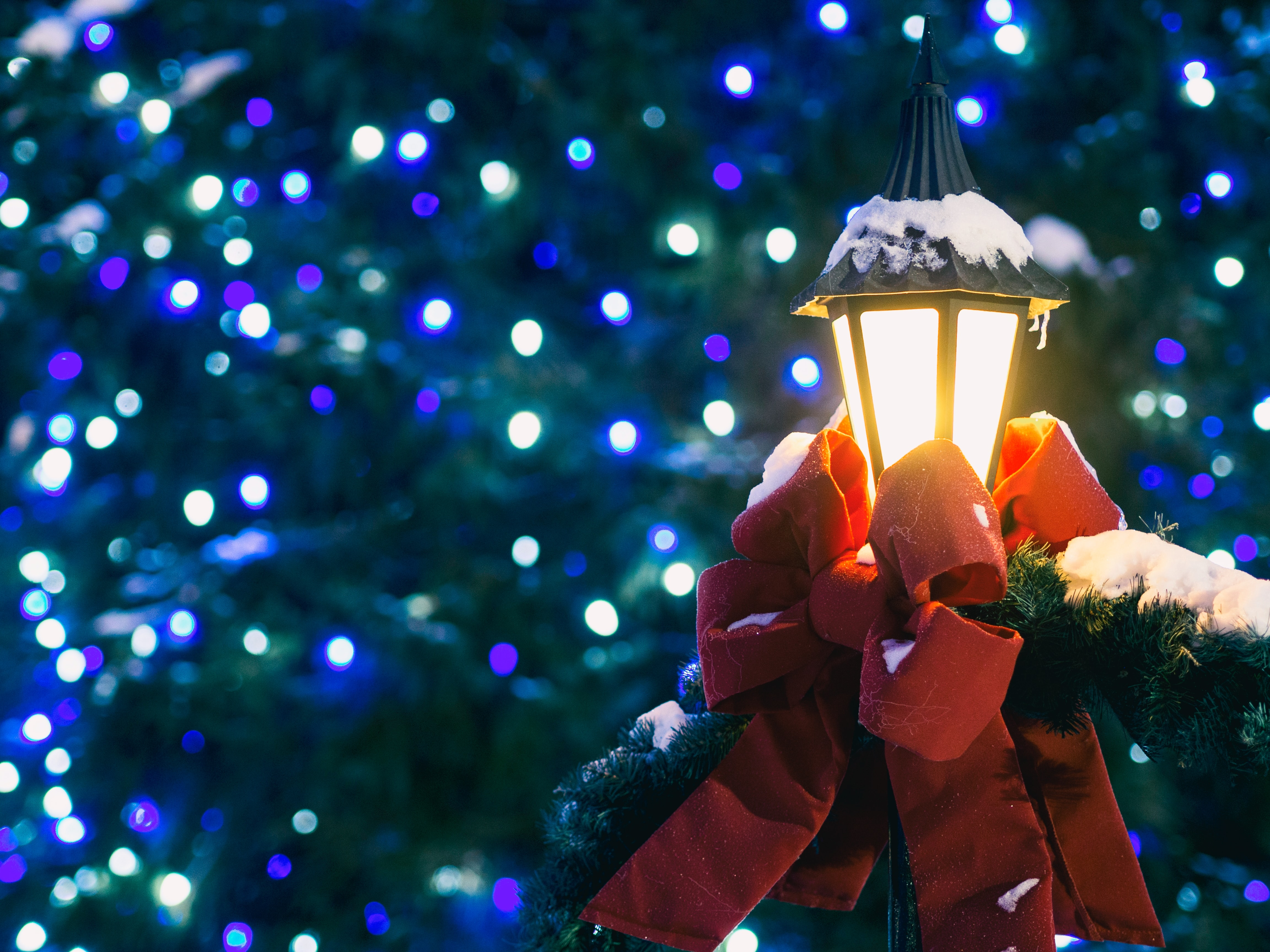900 Christmas Images Download Hd Pictures Photos On Unsplash
