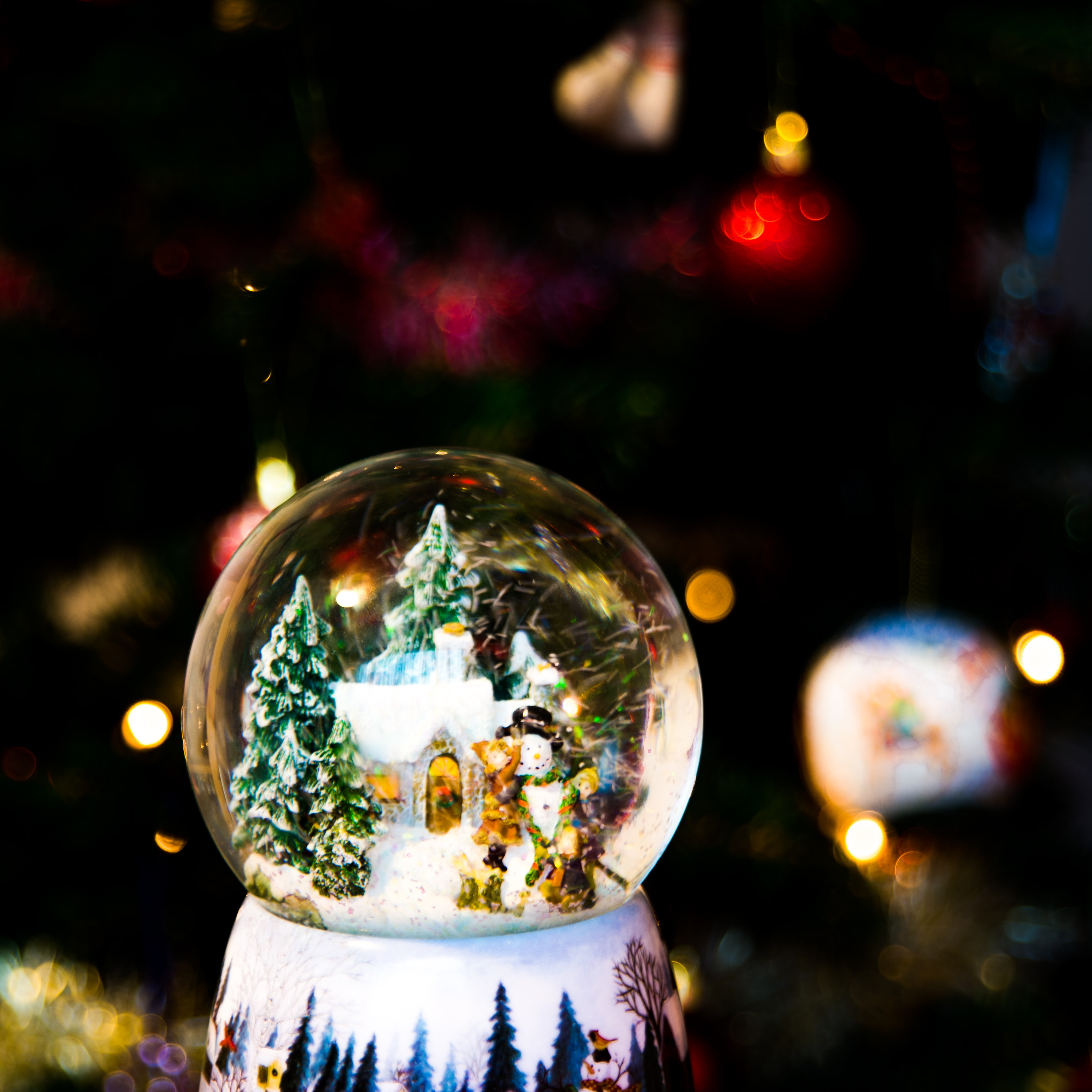 shallow focus photography of glass snow globe