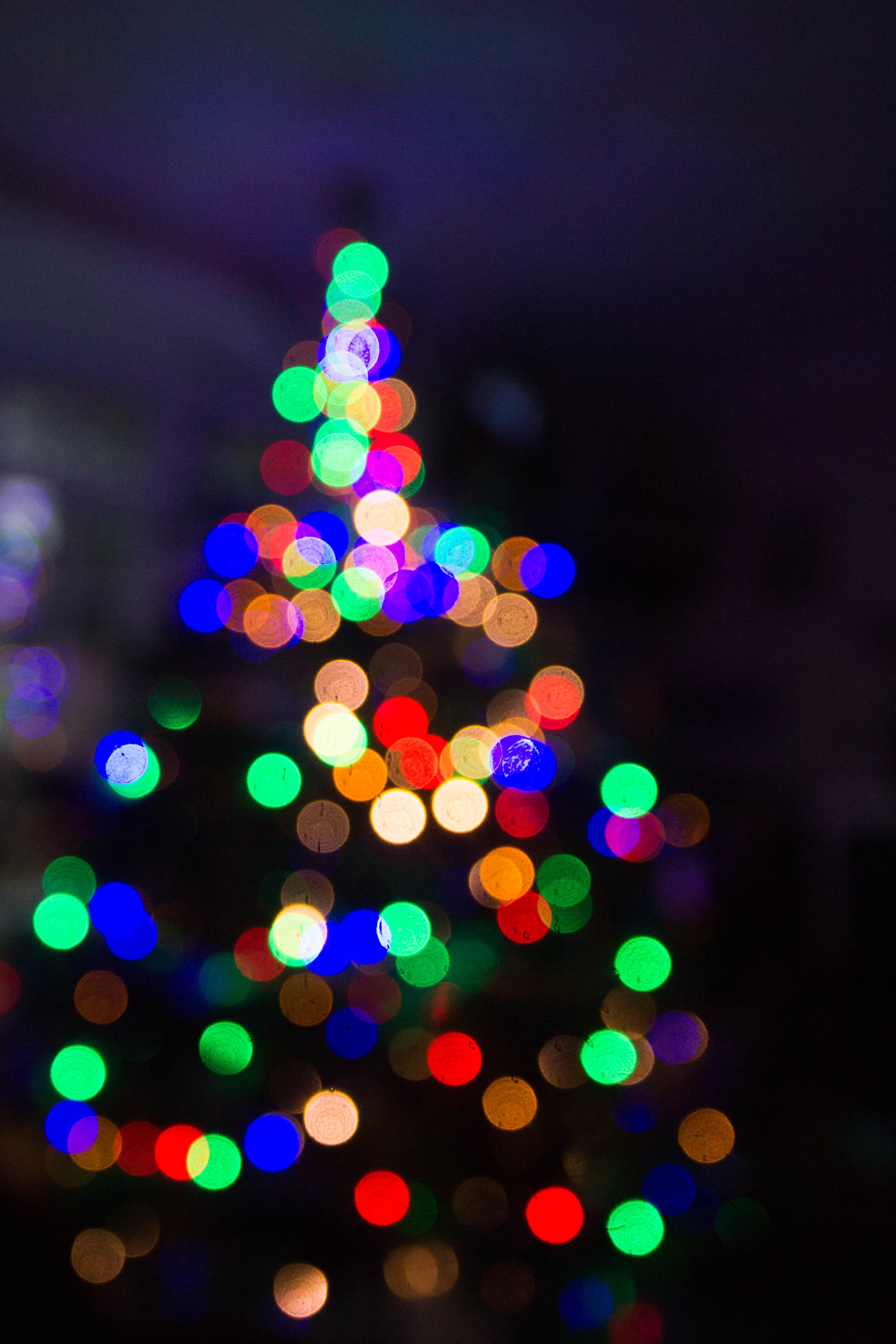 The out-of-focus, festive lights on a Christmas tree create a visual blur of dark and light