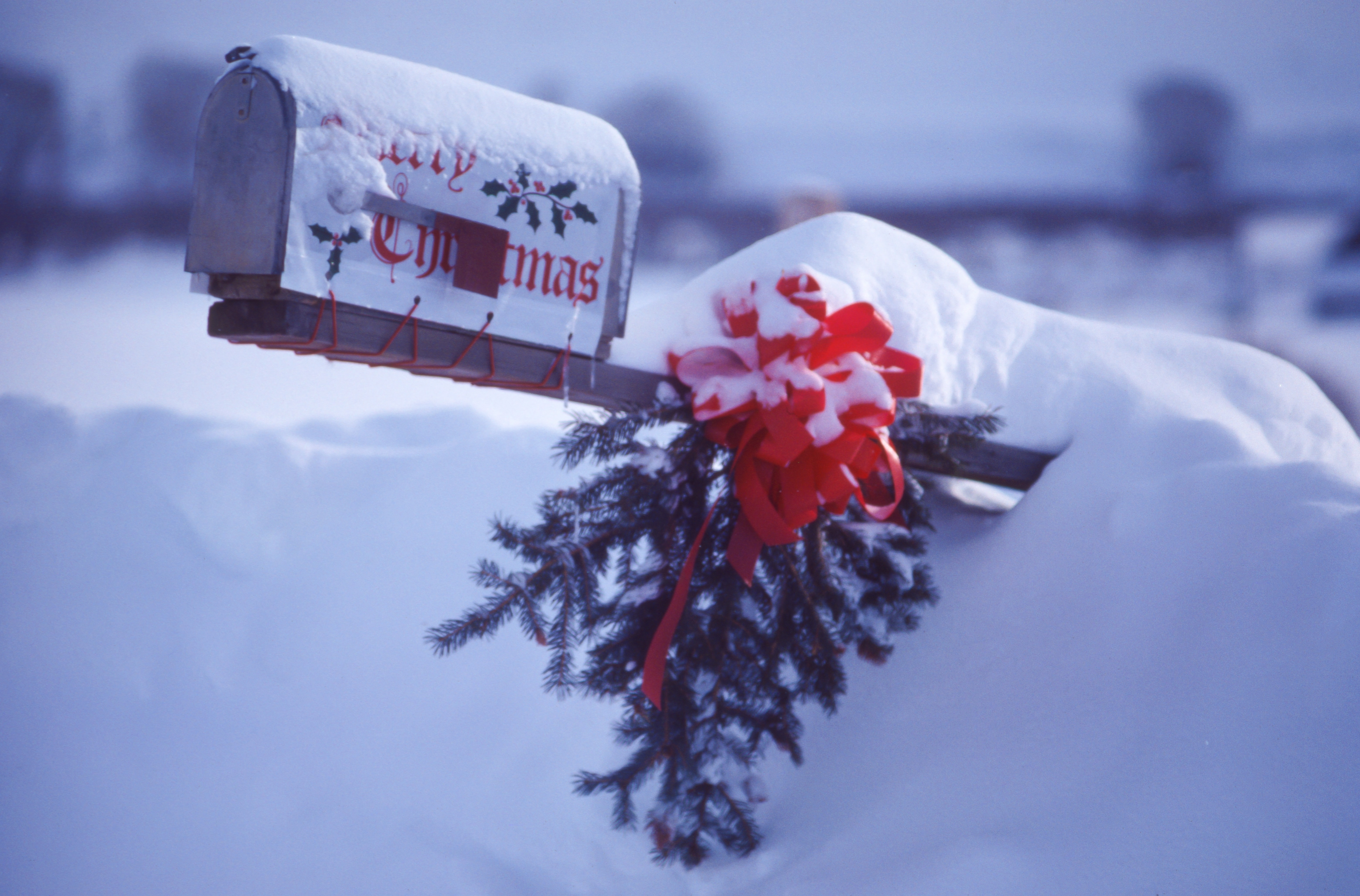 white and red mailbox covering snow