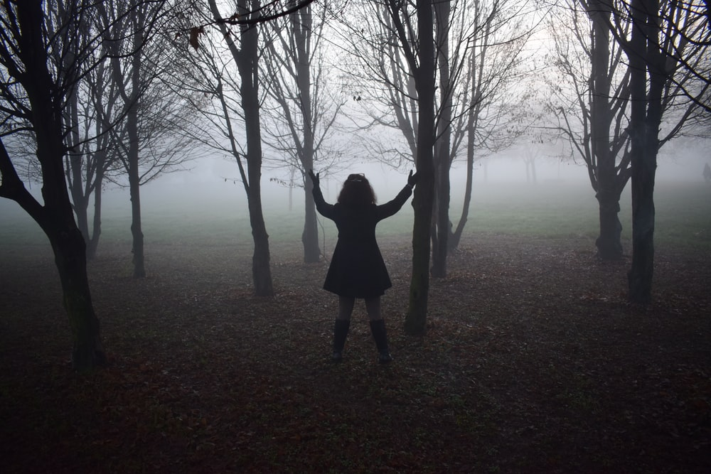 person standing beside black trees photography