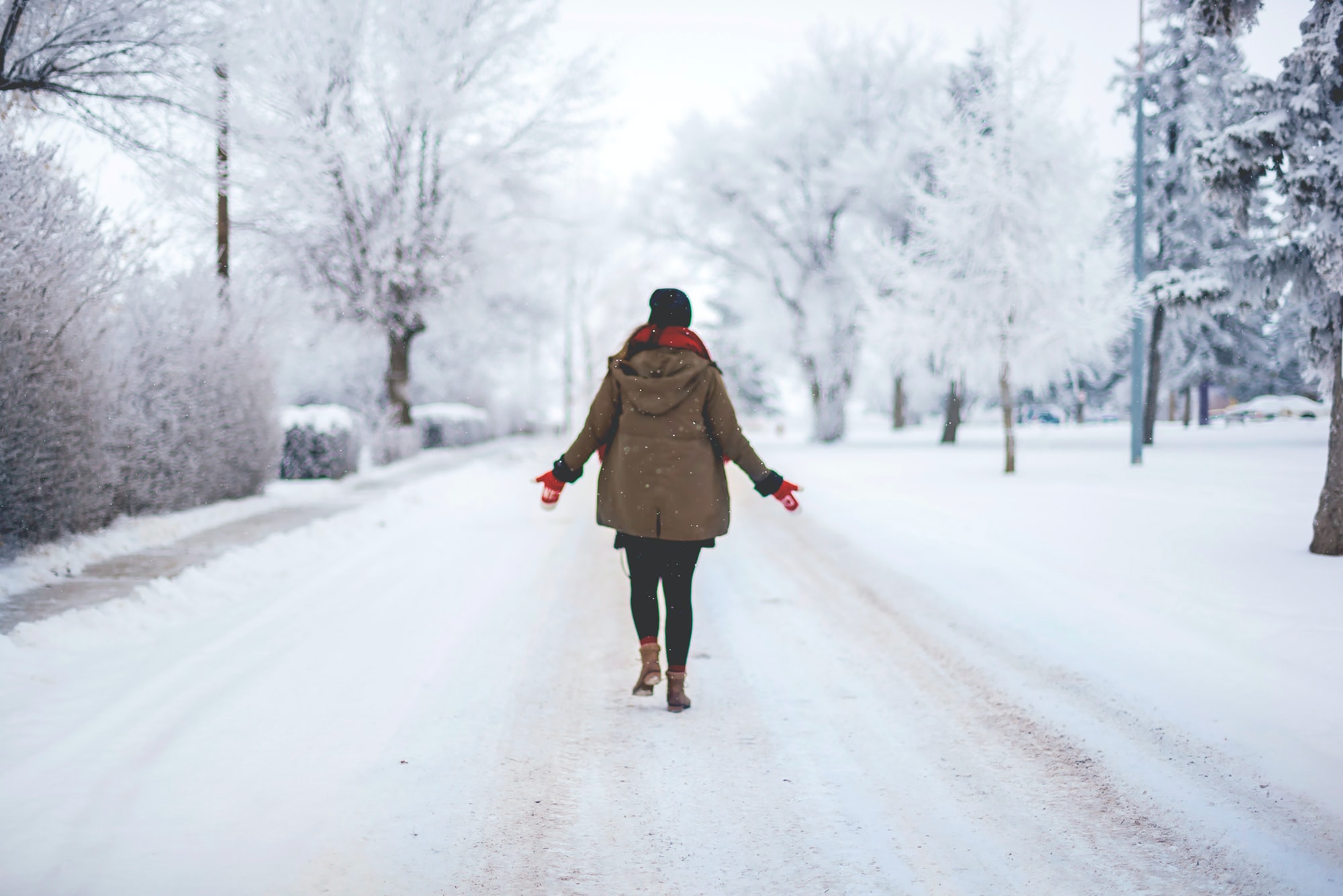 Marvelling in a Winter Wonderland