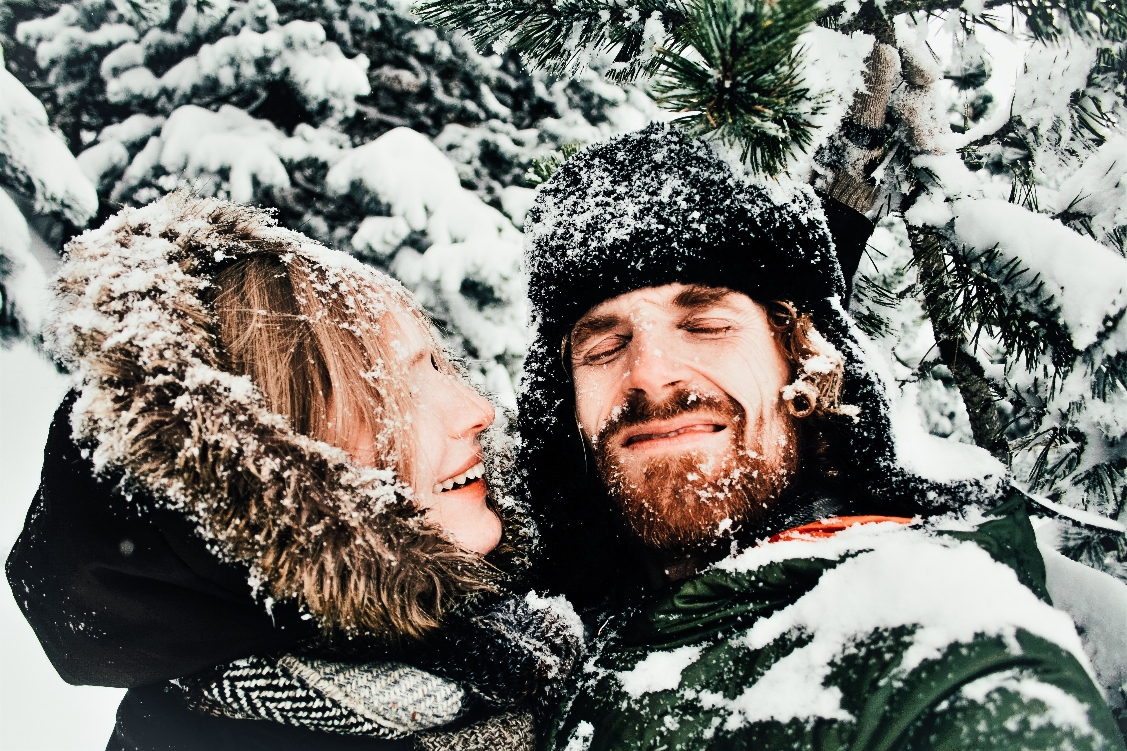 Smiling couple in coats stands among pines, covered in snow