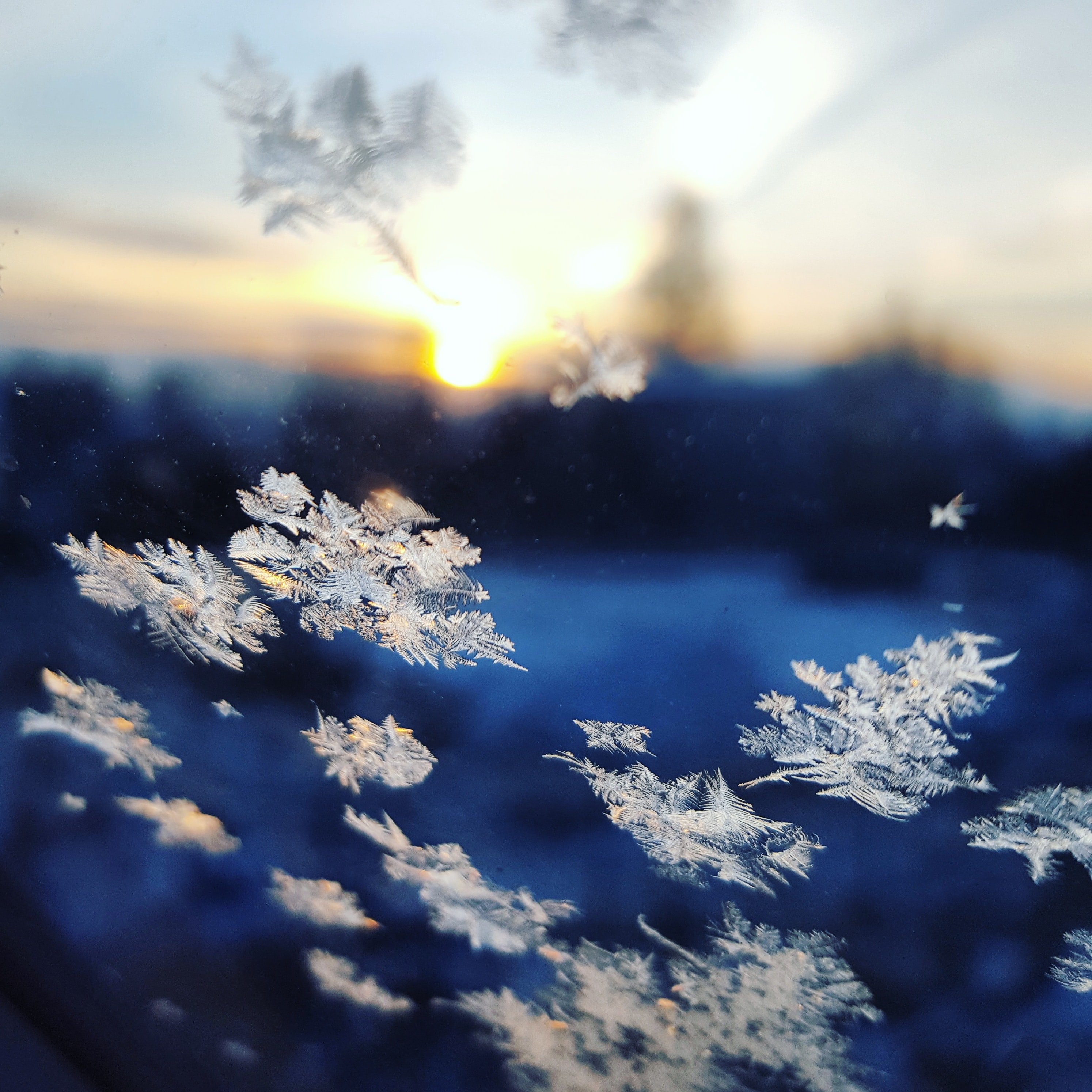 Flurries gently cascade from the sky  change stories