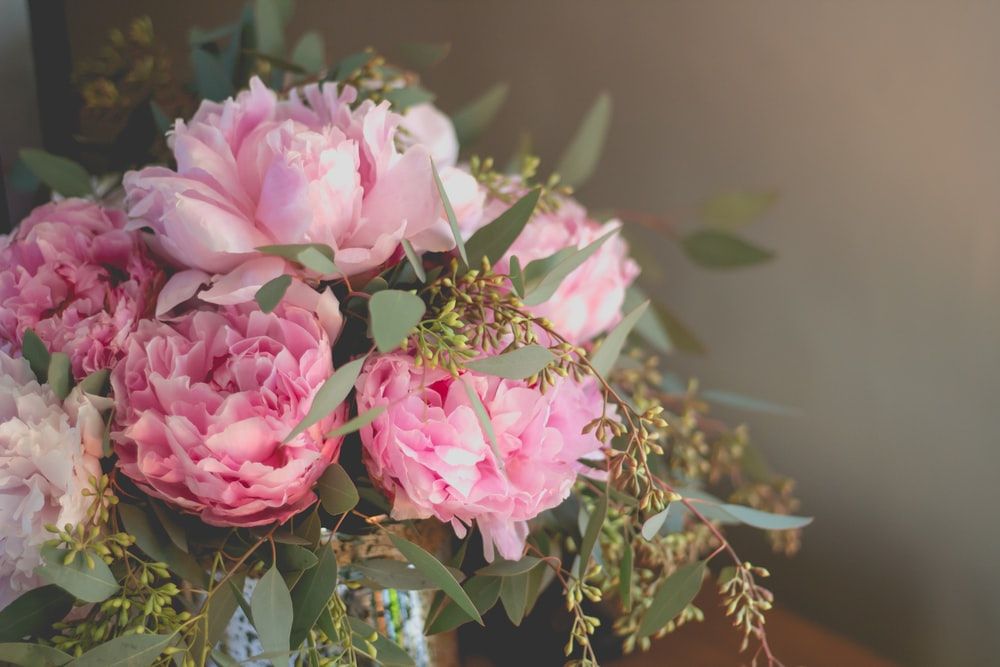 close-up photo of pink petaled flowers bouquet