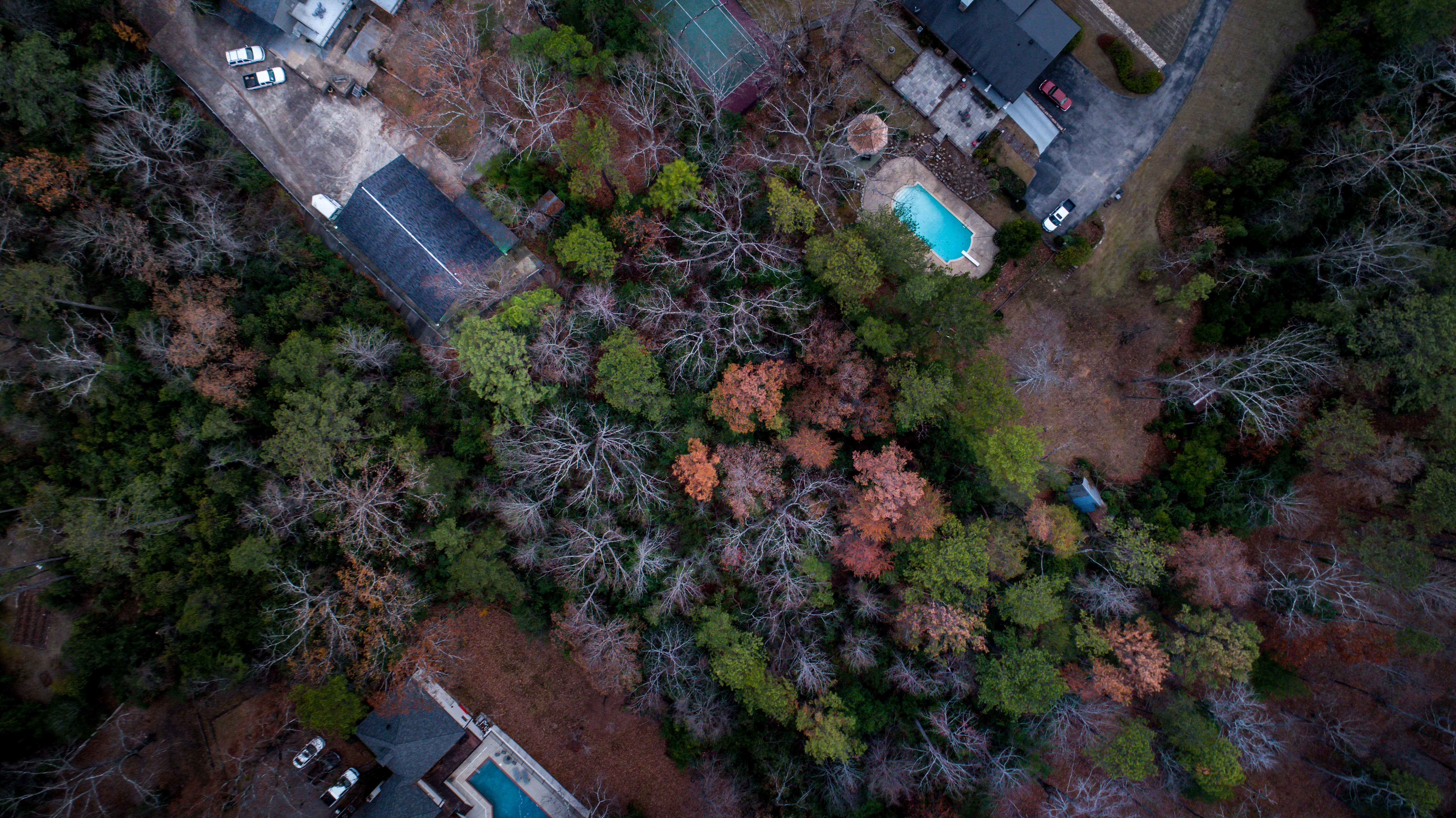 A drone shot of houses with pools at the edge of a forest in Birmingham, Alabama