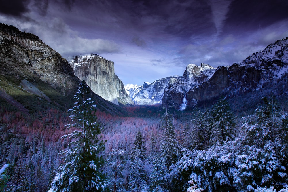 photo of mountains and trees